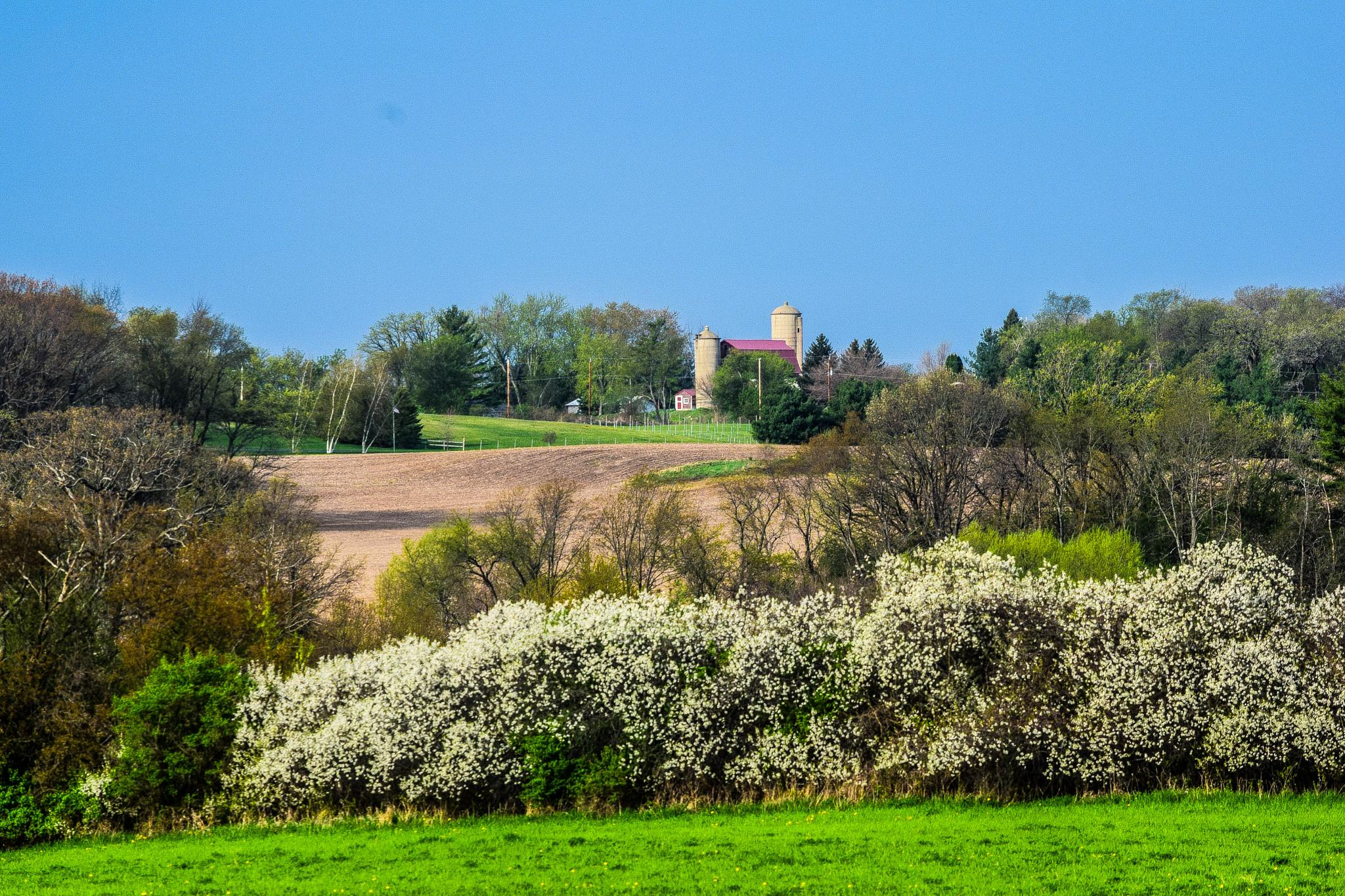 Photo in Landscape #wide angle shot #farmland #spring scene #barn and silo #rural #milton #wisconsin