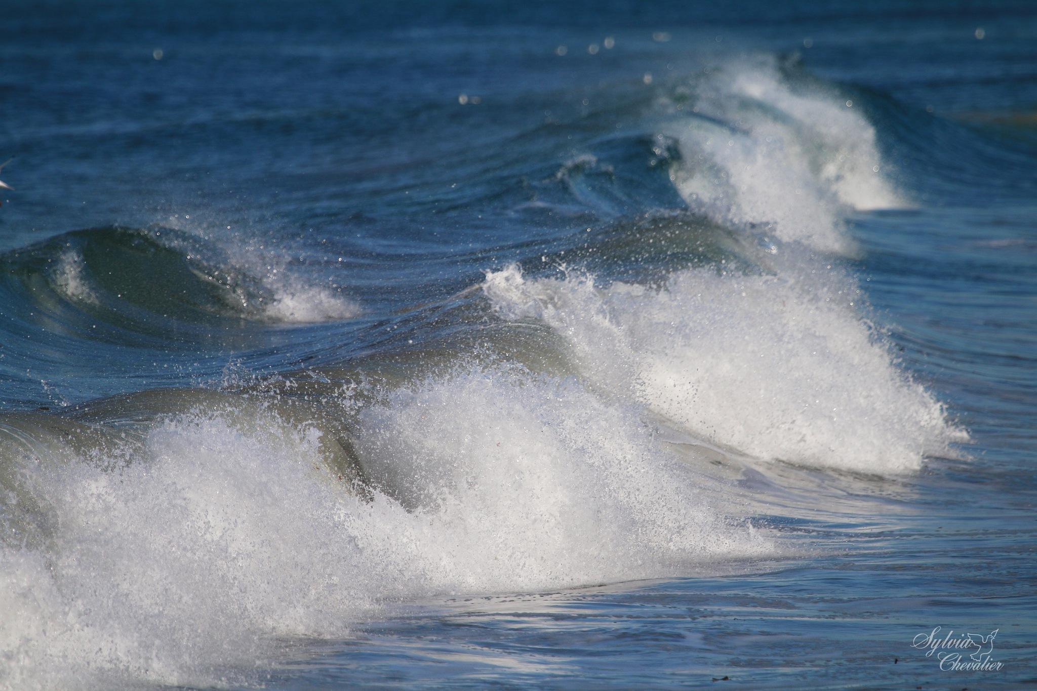 Eclats de vagues dans le Finistère by Chevalier Sylvia