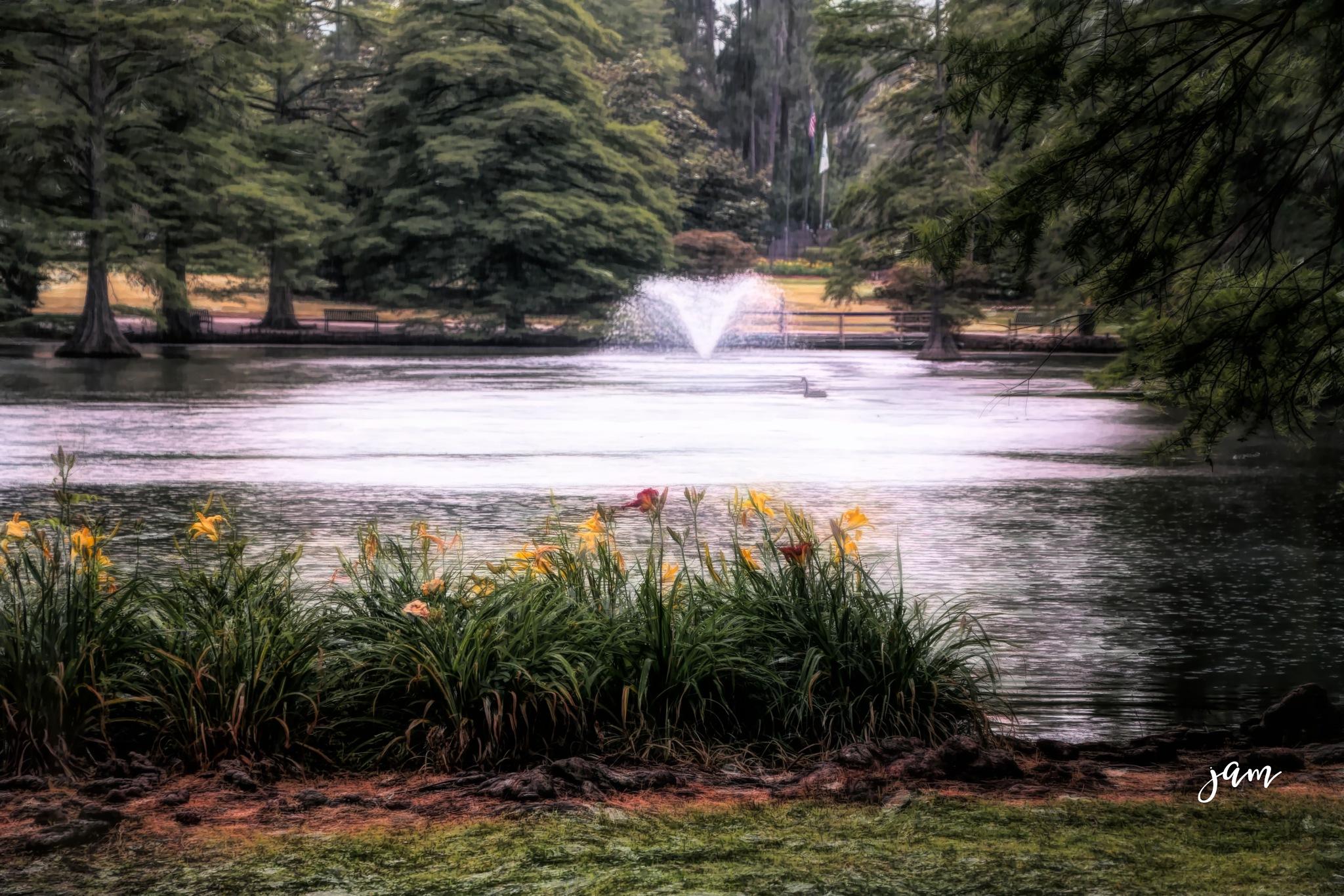 Swan Lake by jammiejam