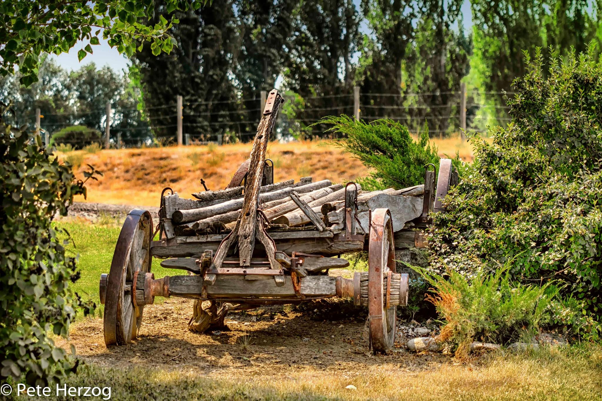Vintage Wagon by peter.herzog.3323
