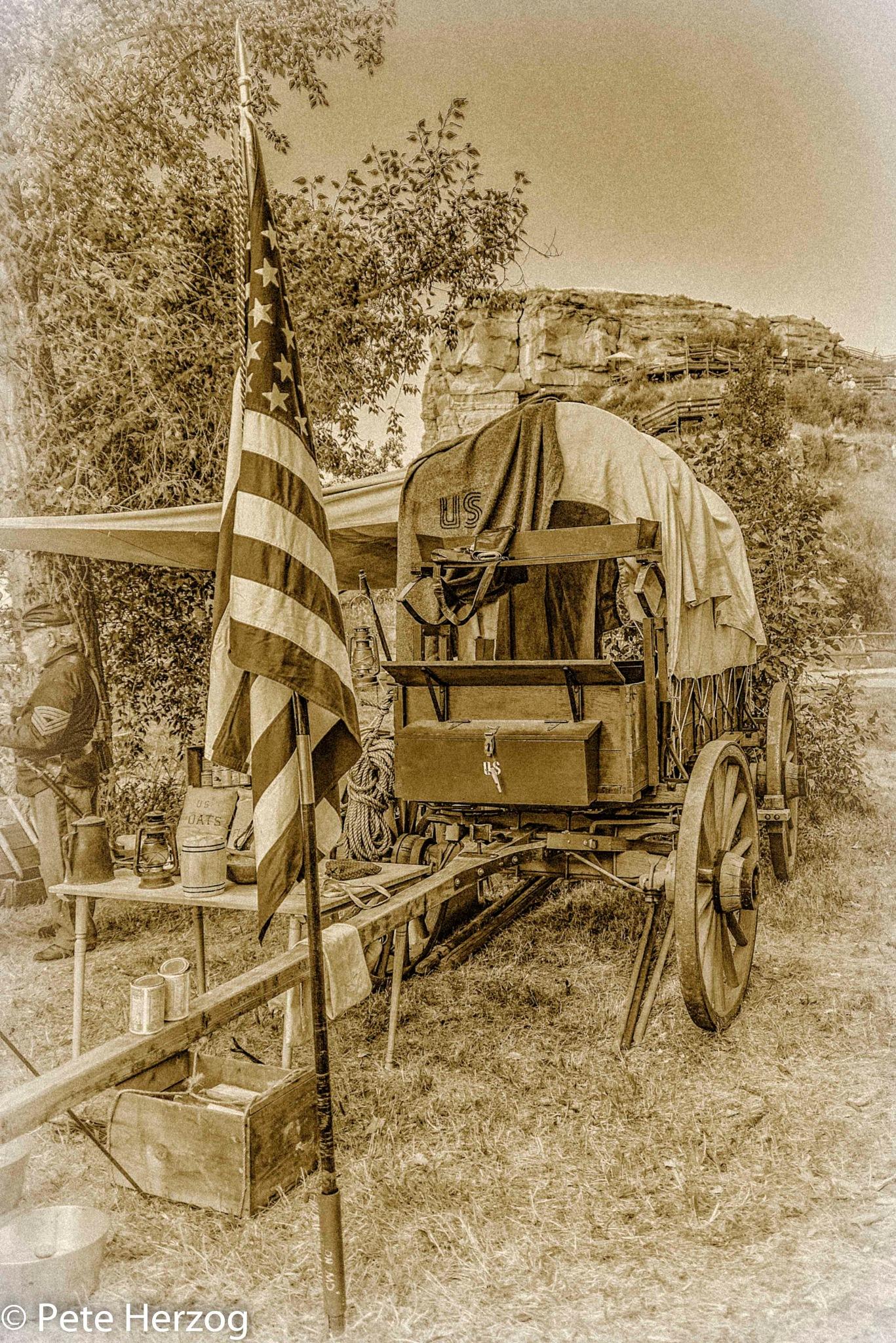 Cavalry Wagon by peter.herzog.3323