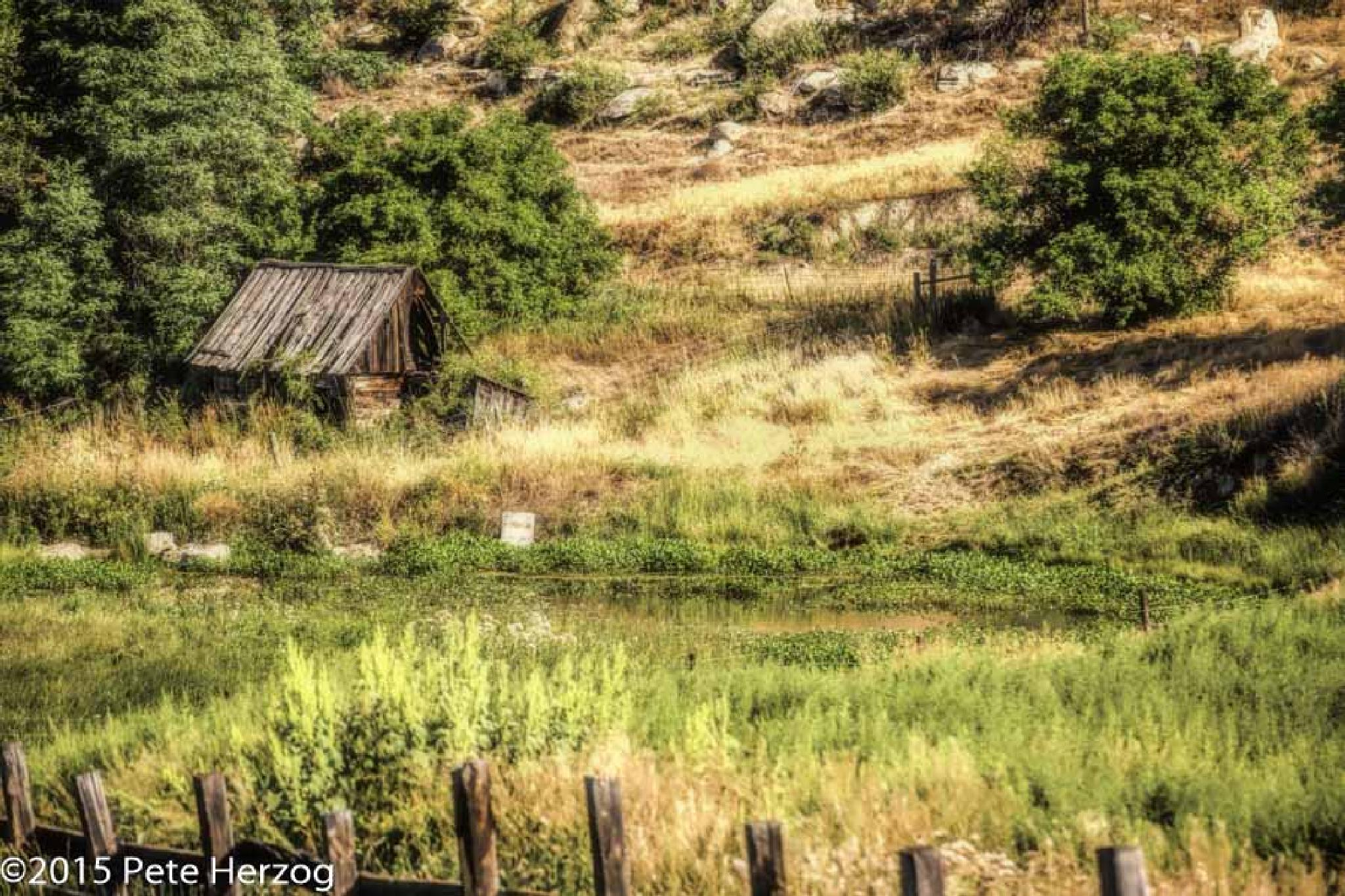Old Shed and Pond by peter.herzog.3323