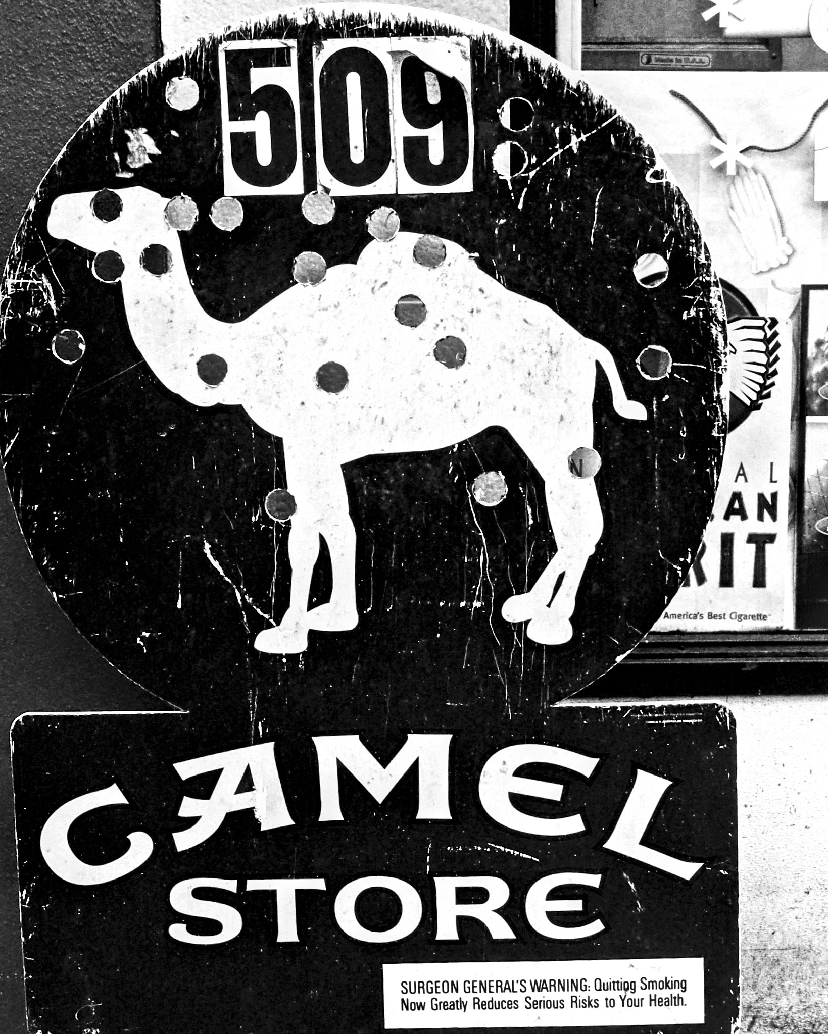 Camel Store Sign by peter.herzog.3323