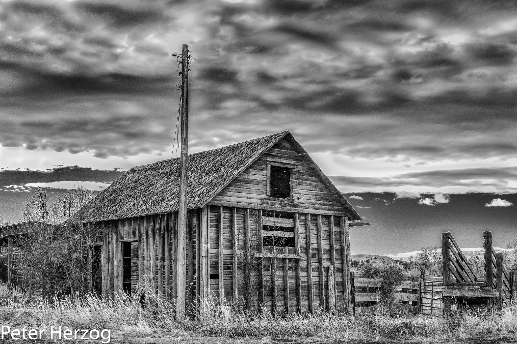 Light Pole and Shed by peter.herzog.3323