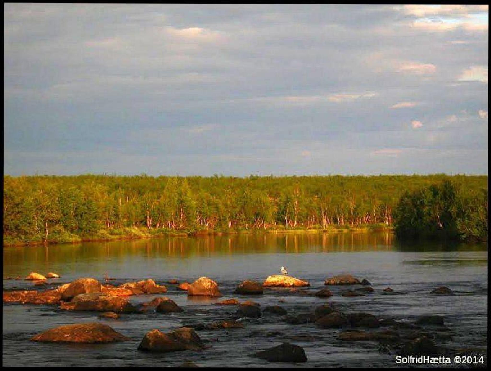 Photo in Landscape #finmark norway nature