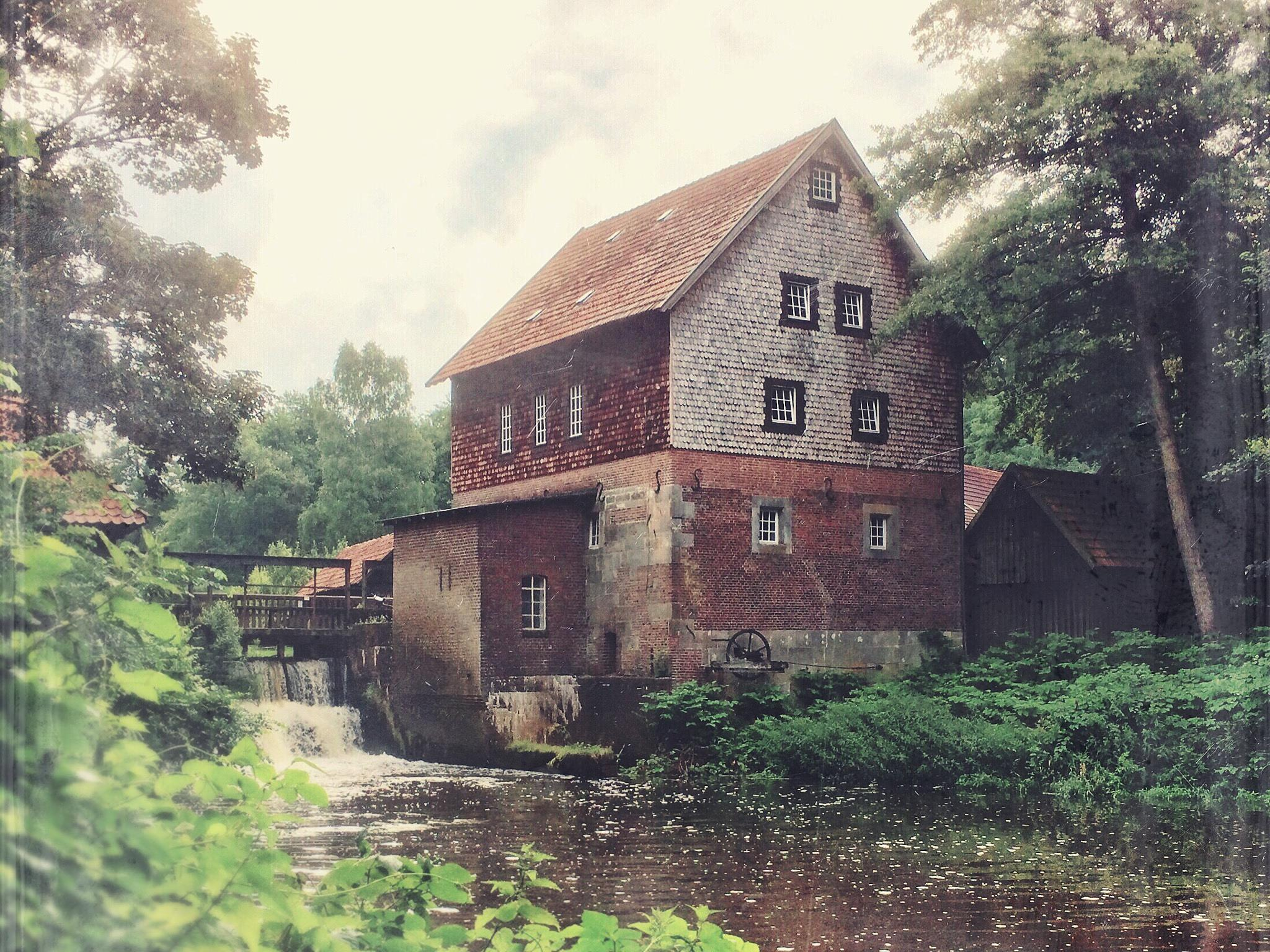 The Water Mill by hans.borghorst