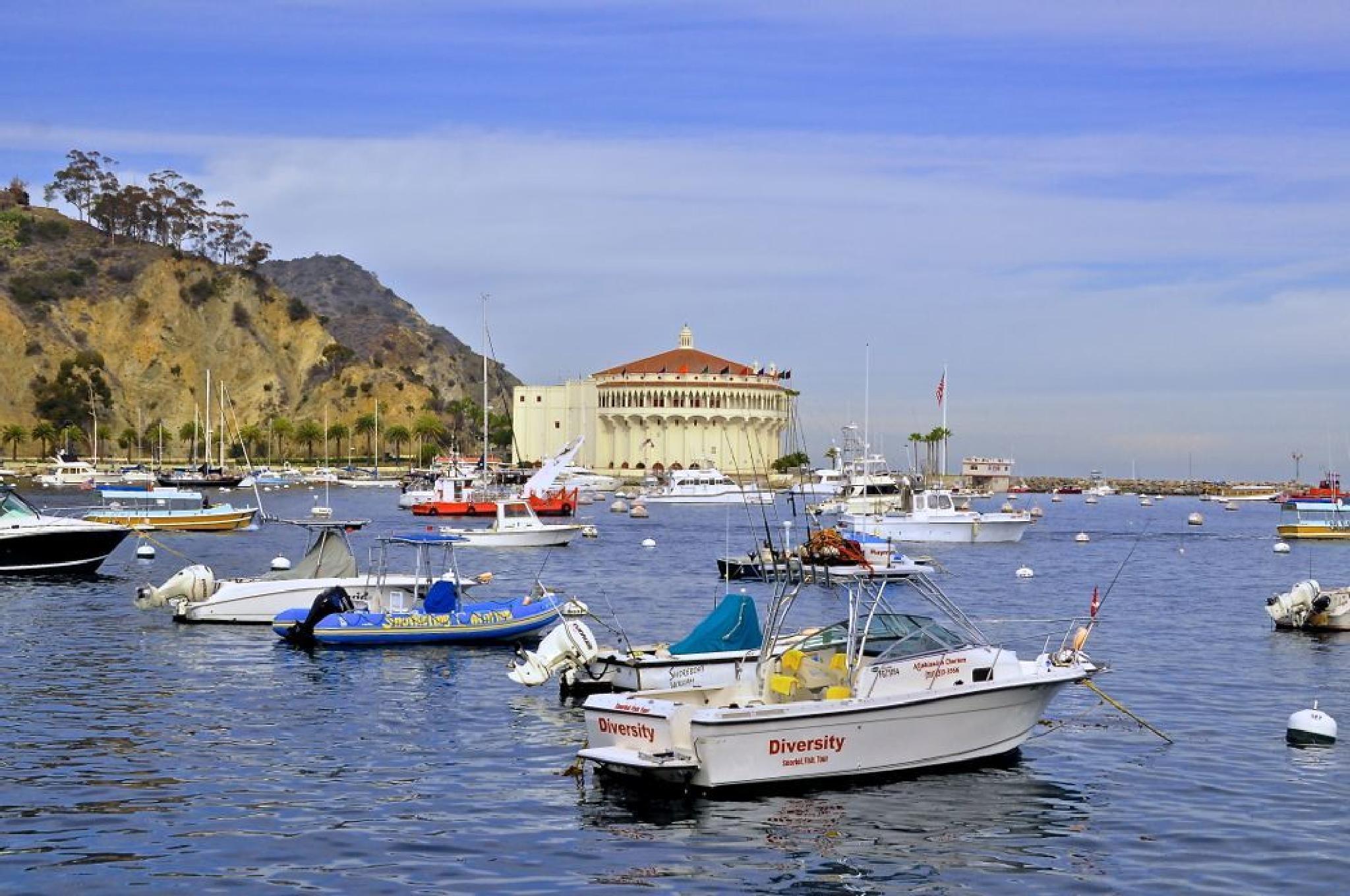 Catalina Island, California by Robert Ou