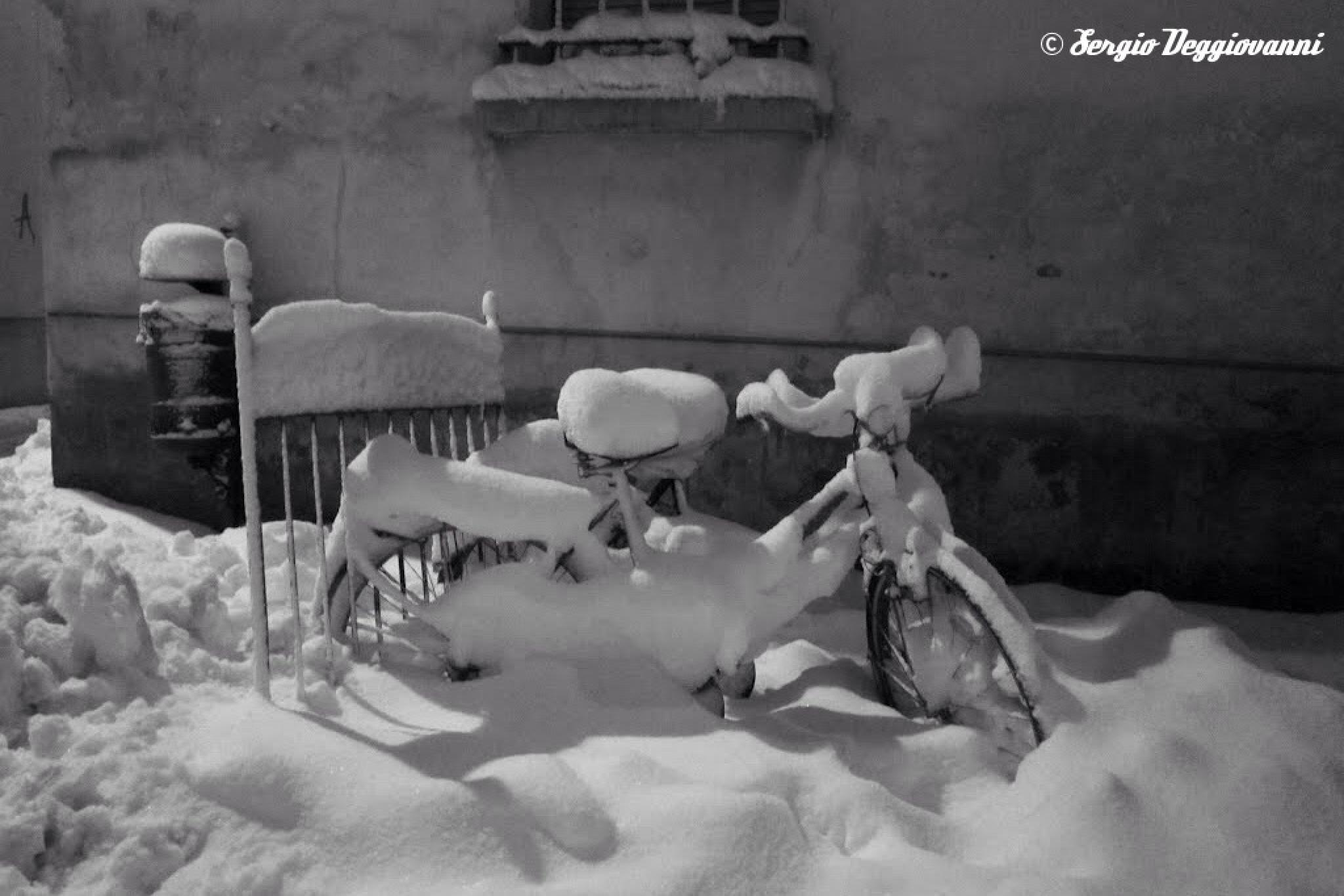 Photo in Black and White #night #snow #bw #bnw #bicycle #winter