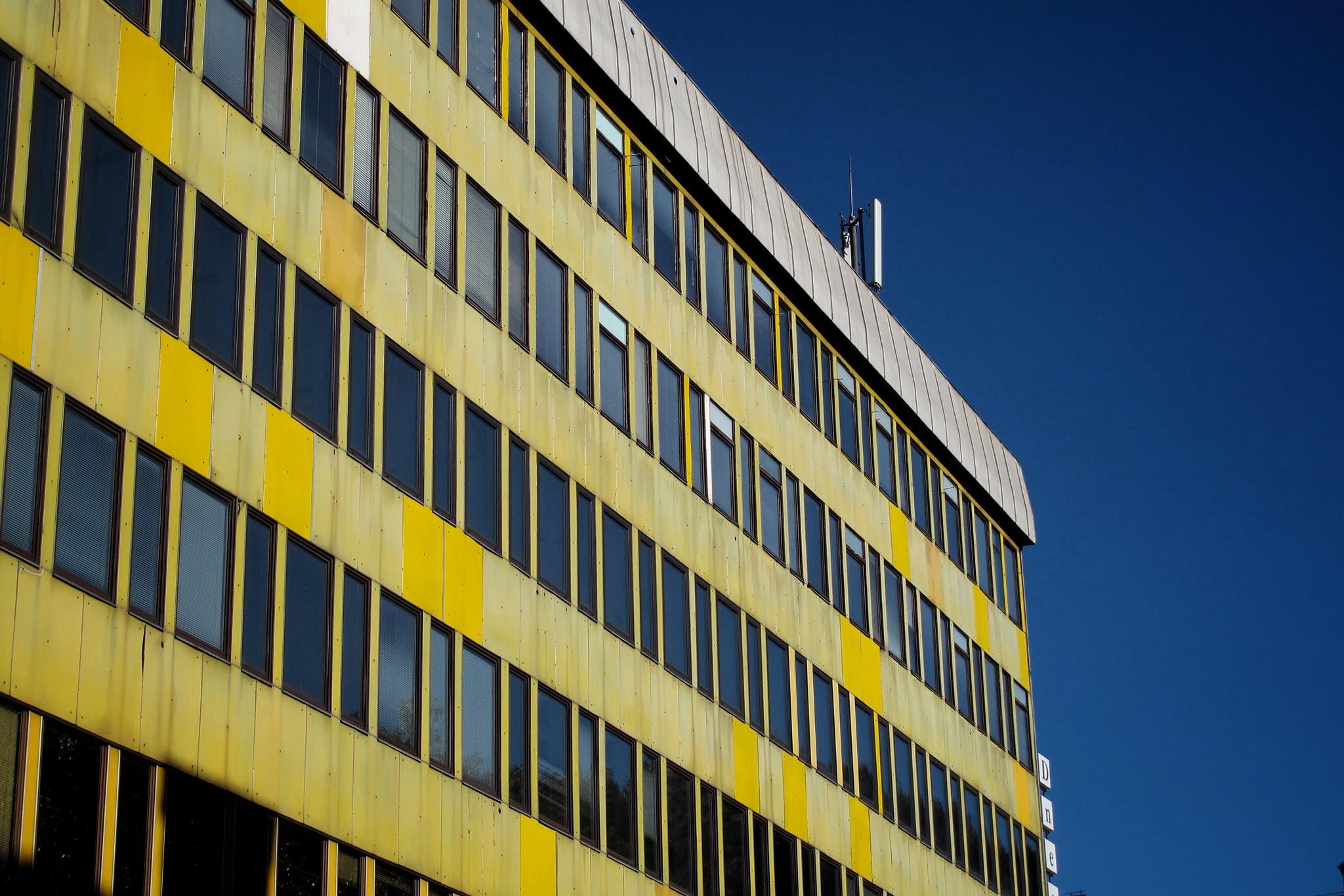Yellow and blue by Sergio Deggiovanni