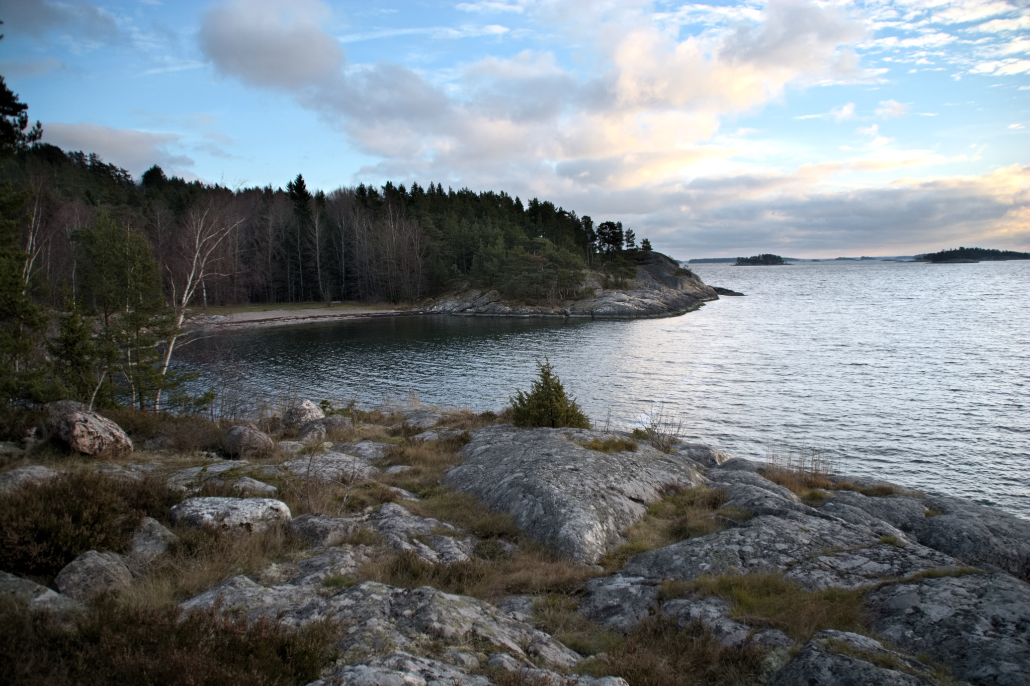 Bråviken by Dan Carlsson