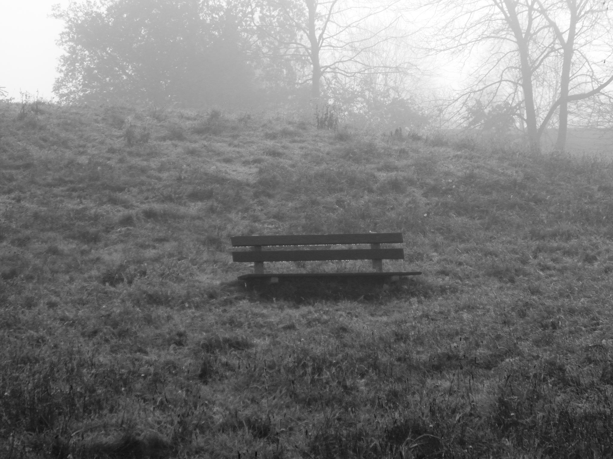 bench by gineke.sterenborg