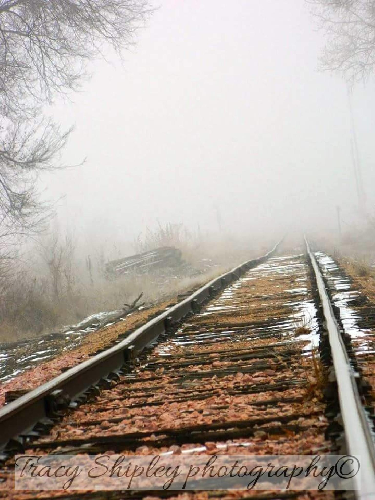 Train tracks in the fog by Tracy S