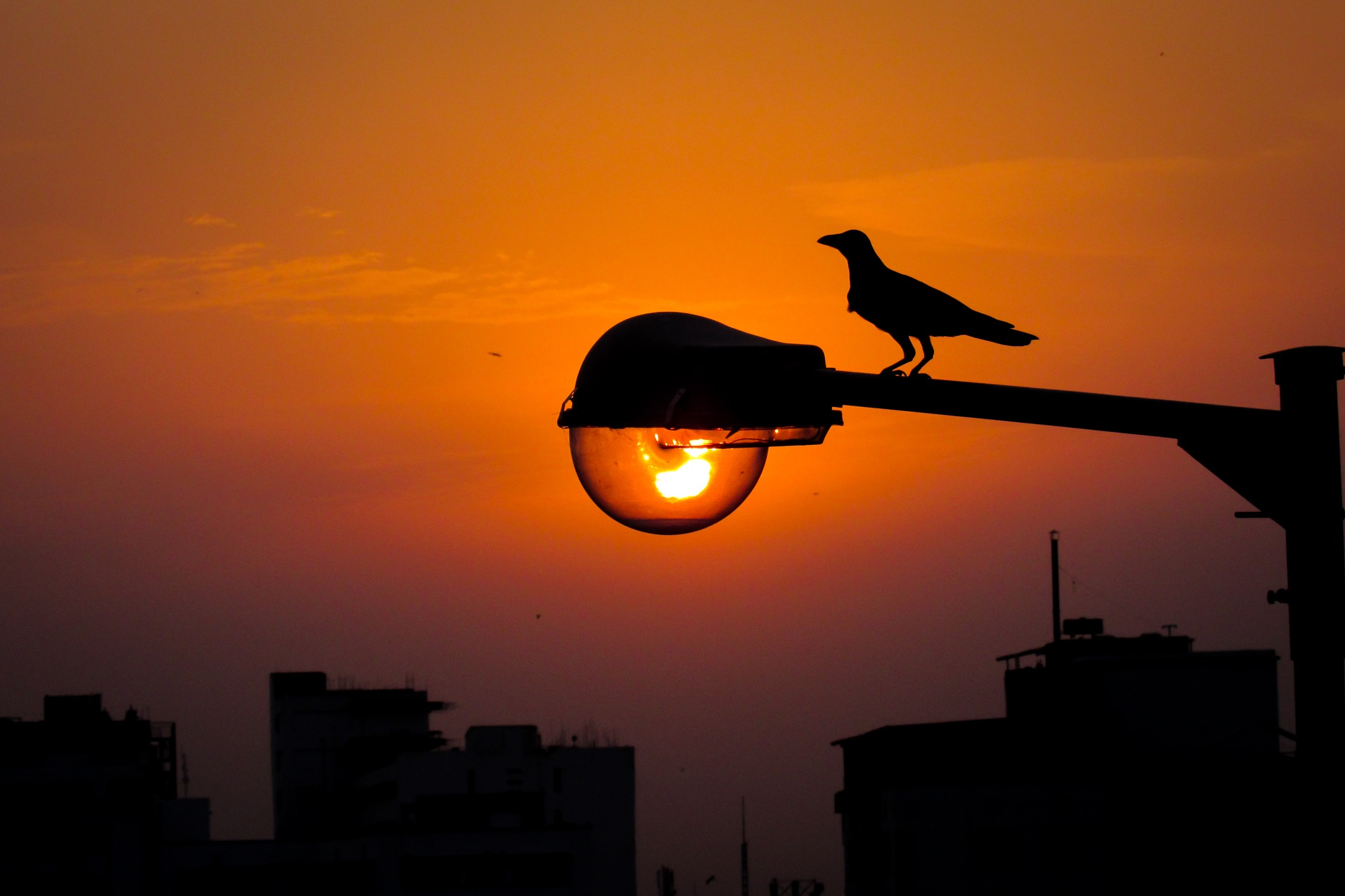 when the sun became a part of a street light... by Md. Abrar