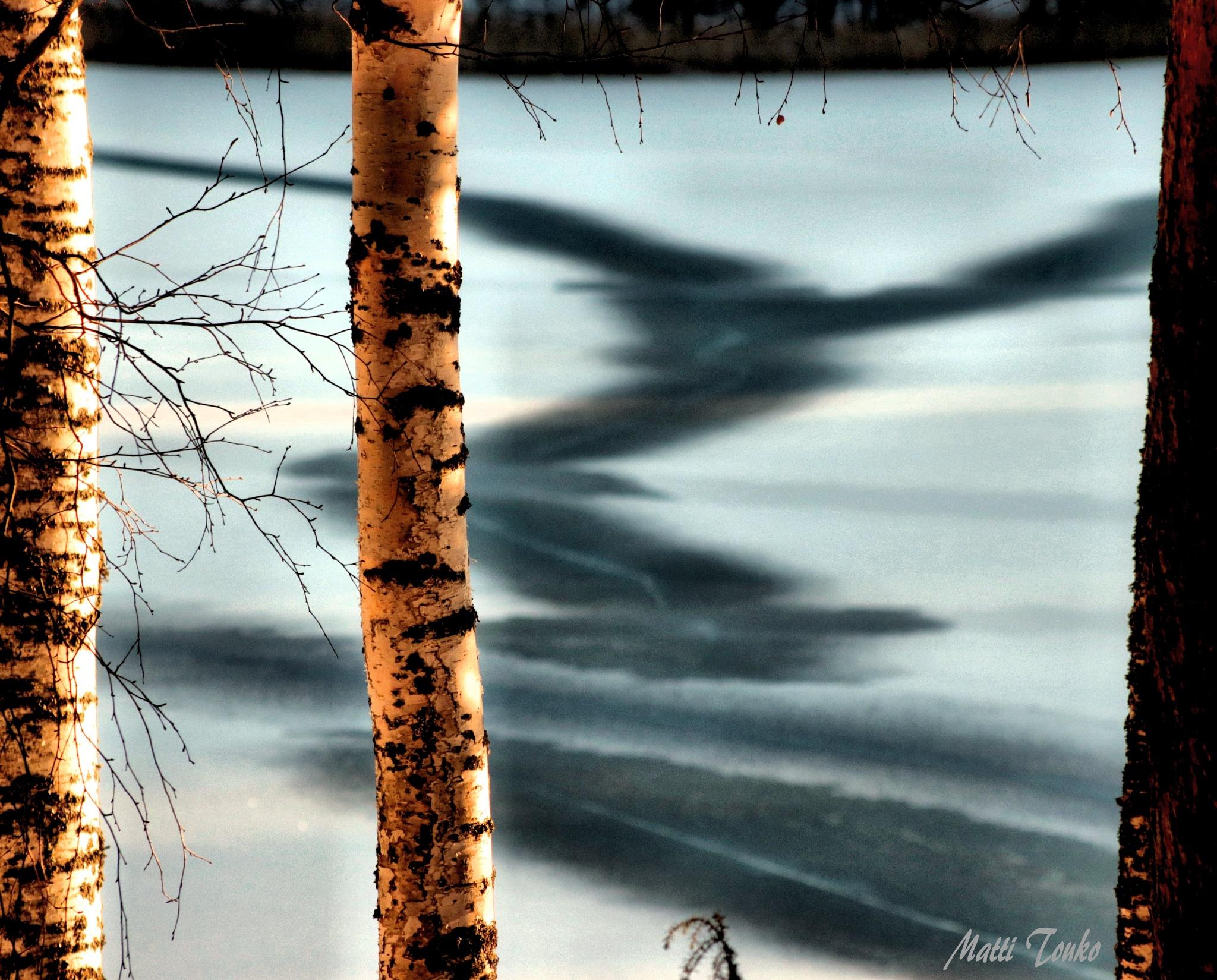 nature art by Matti Touko