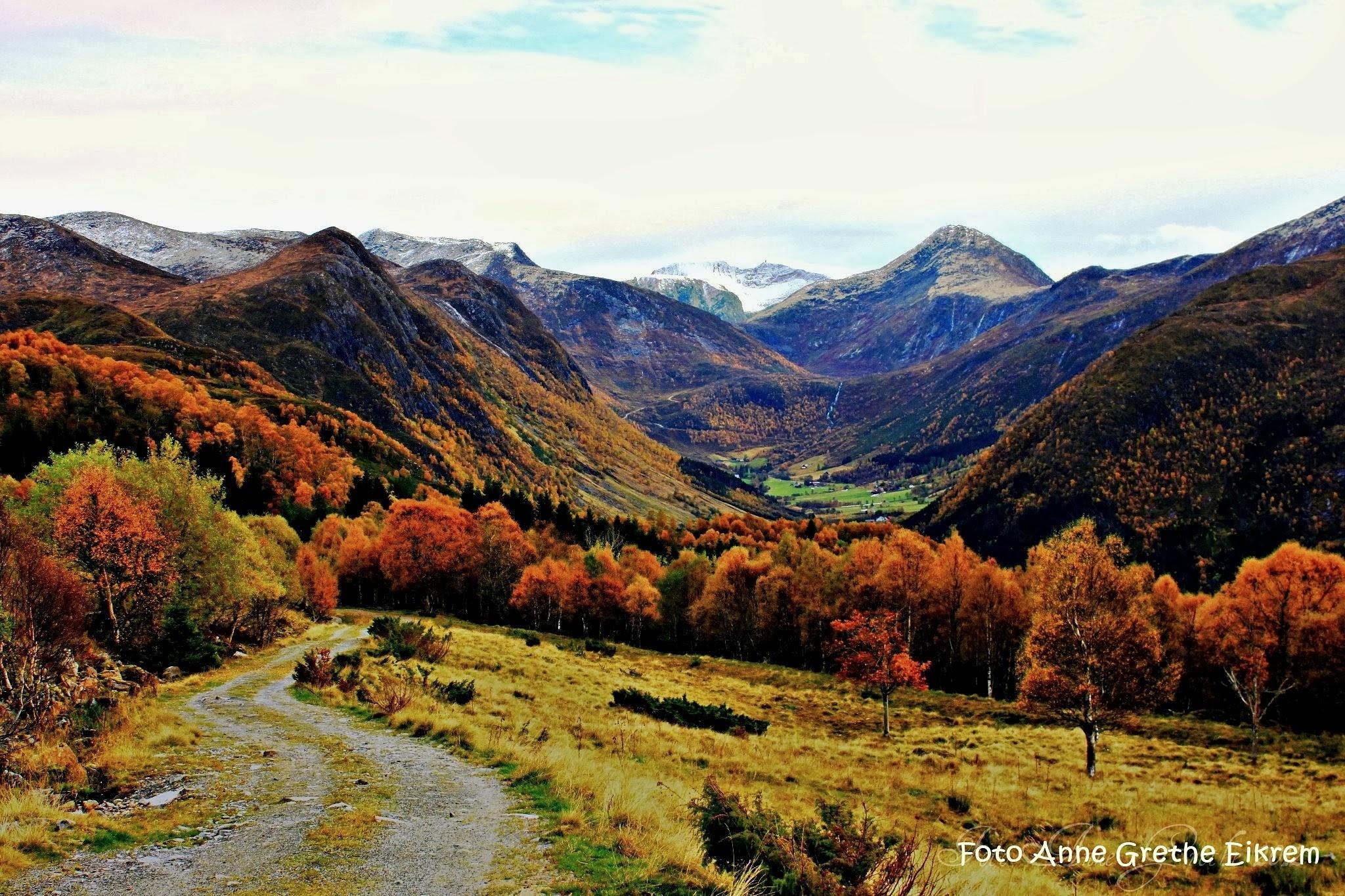 Autumn in norway by Anne Grethe Eikrem