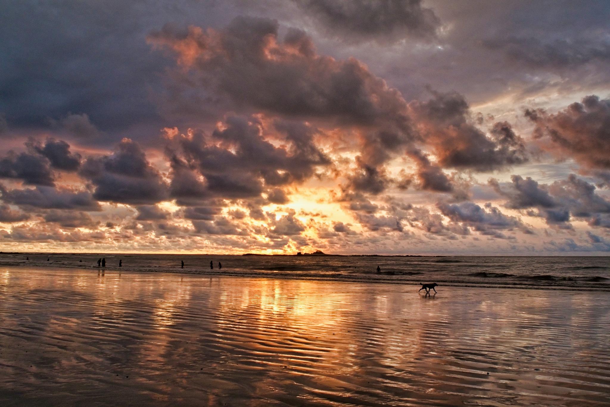 Photo in Landscape #clouds #colors #sky #light #ocean #people #dog #sunset #playa tamarindo