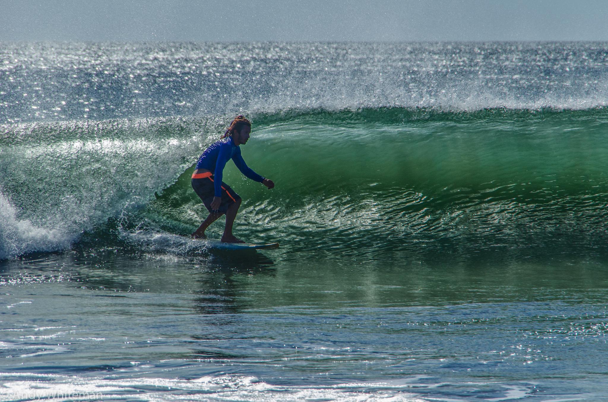 Photo in Sea and Sand #casasmilindog