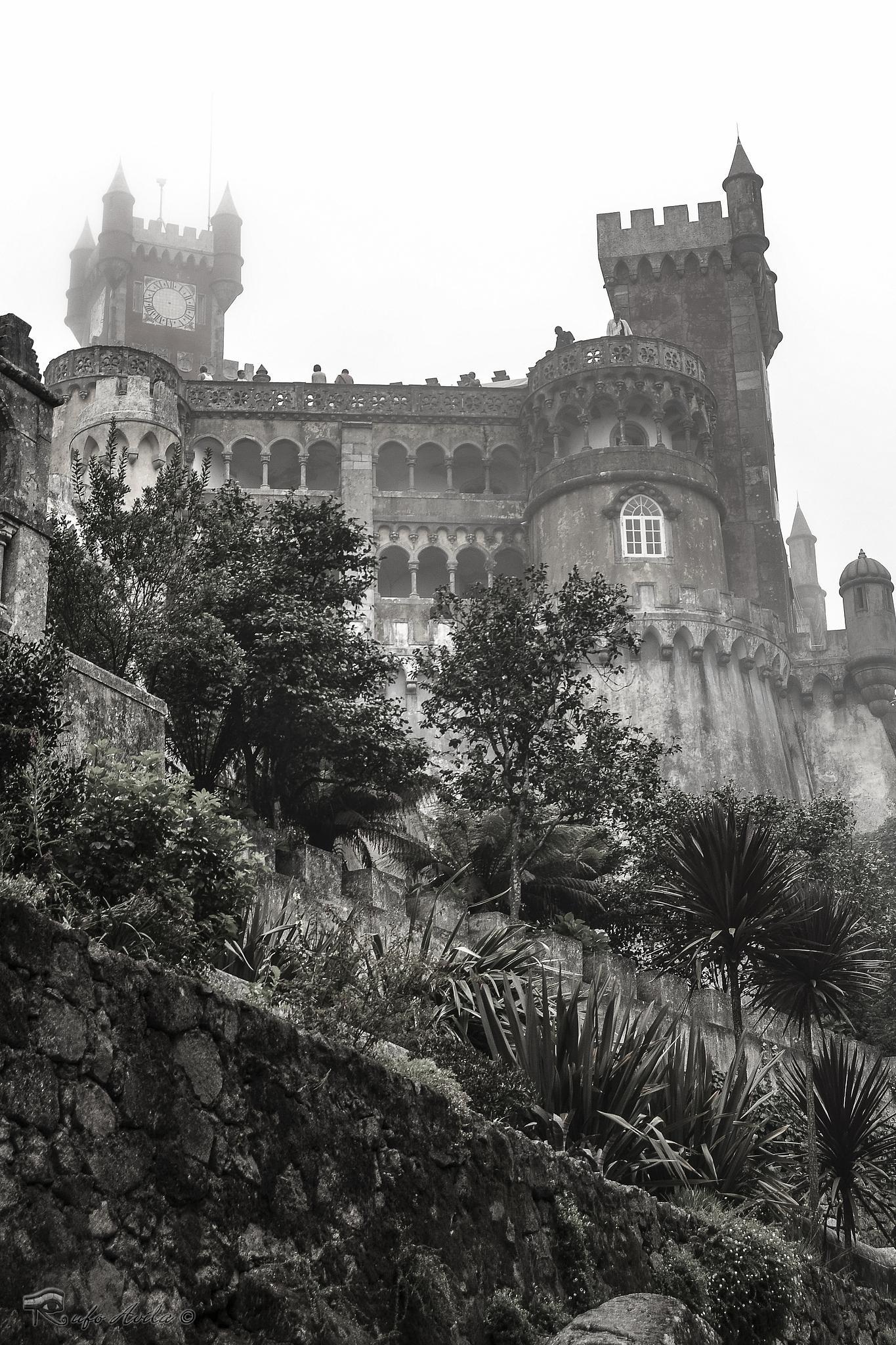 Photo in Black and White #castillo #sintra #portugal