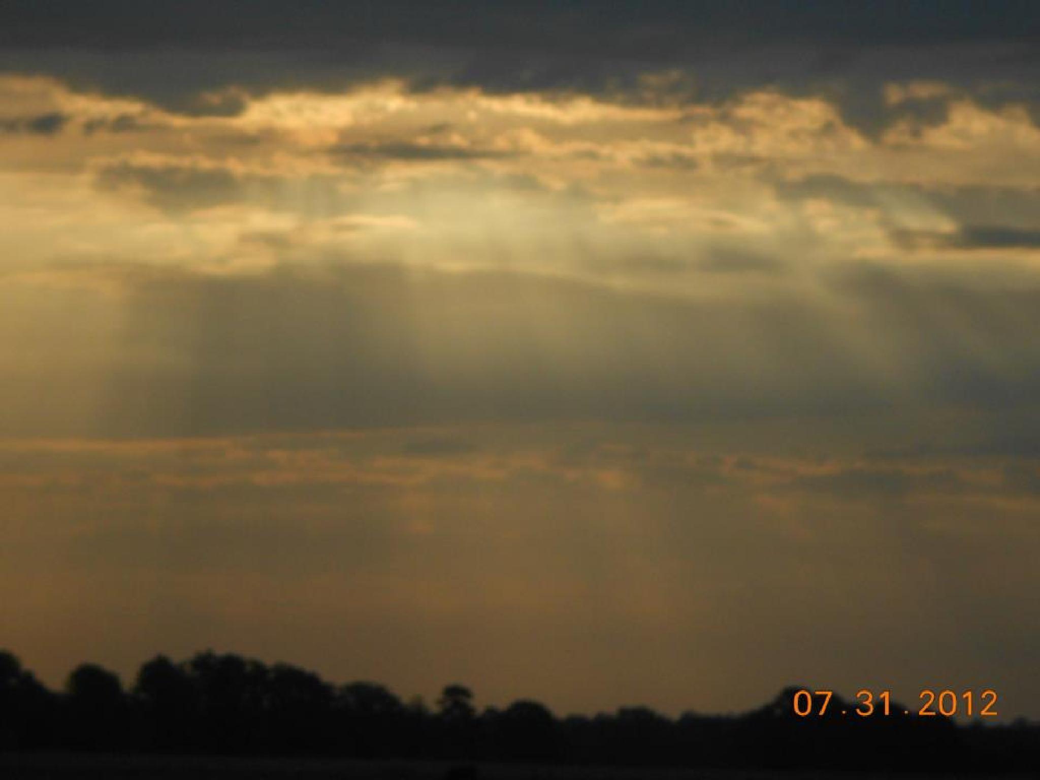 A New Dawn by Zany Dee