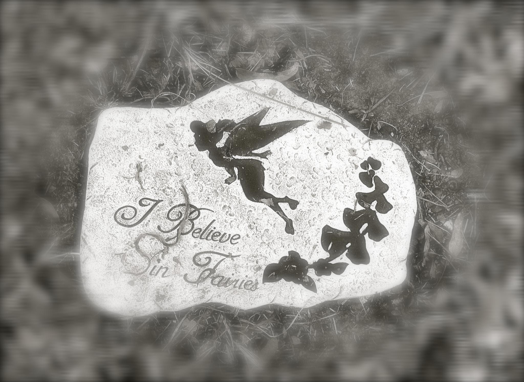 I Believe in Fairies by jmedlin61
