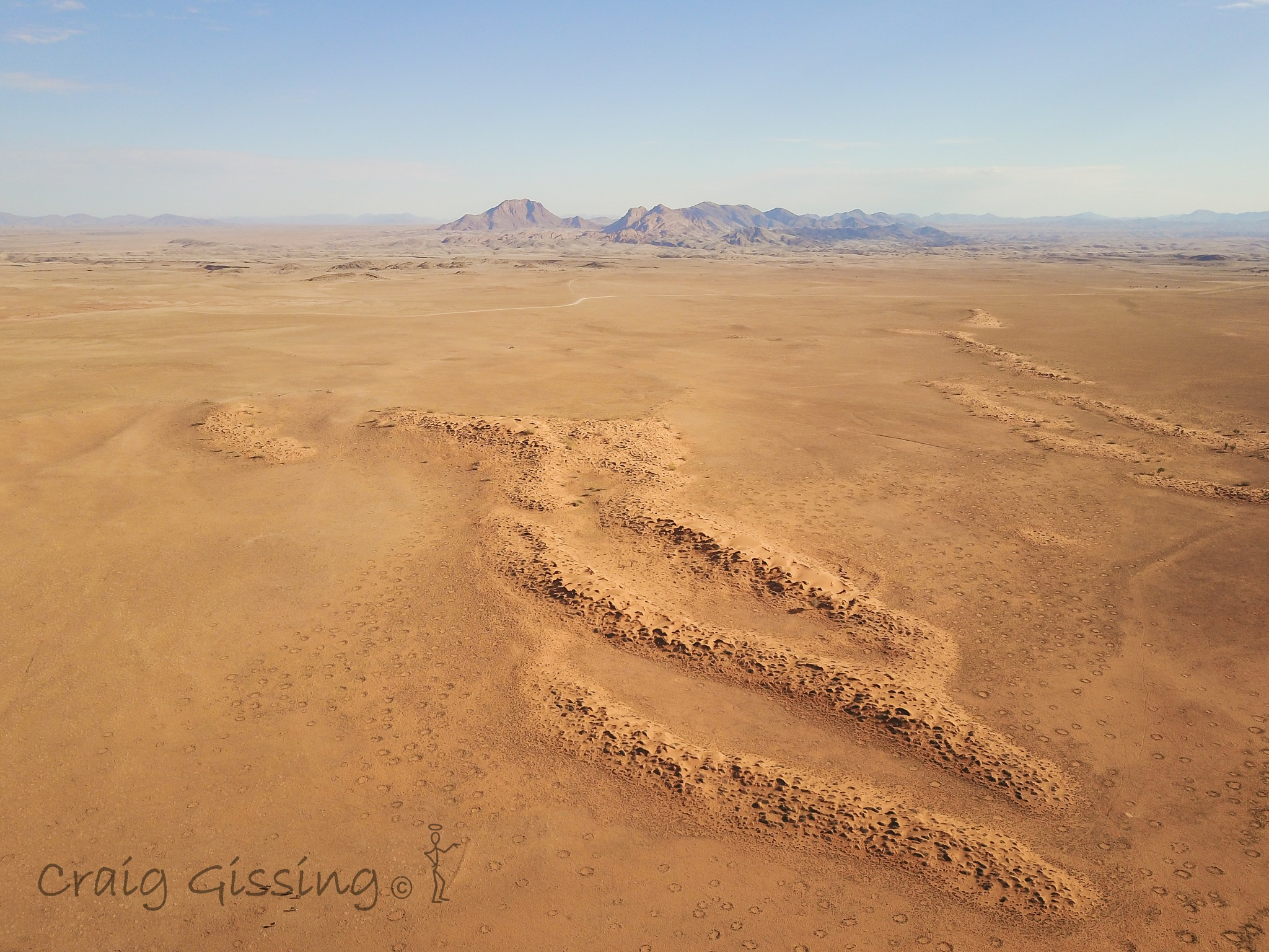 Fairy circles in the desert by craig.gissing