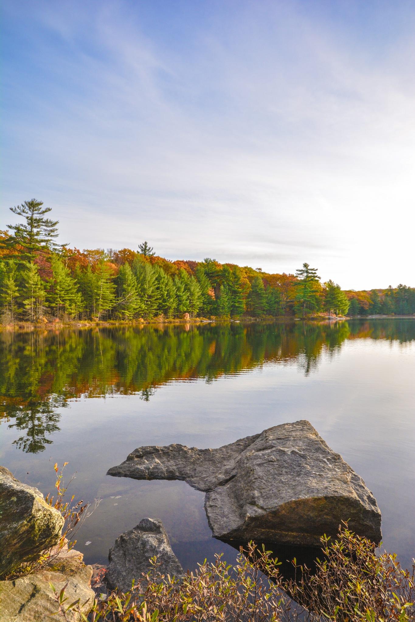 Reflecting On Lake Of Bays by kajen746