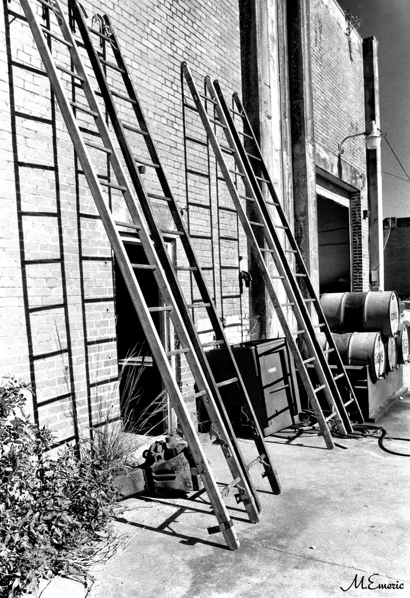 Bricks & Ladders by Maureen Emeric