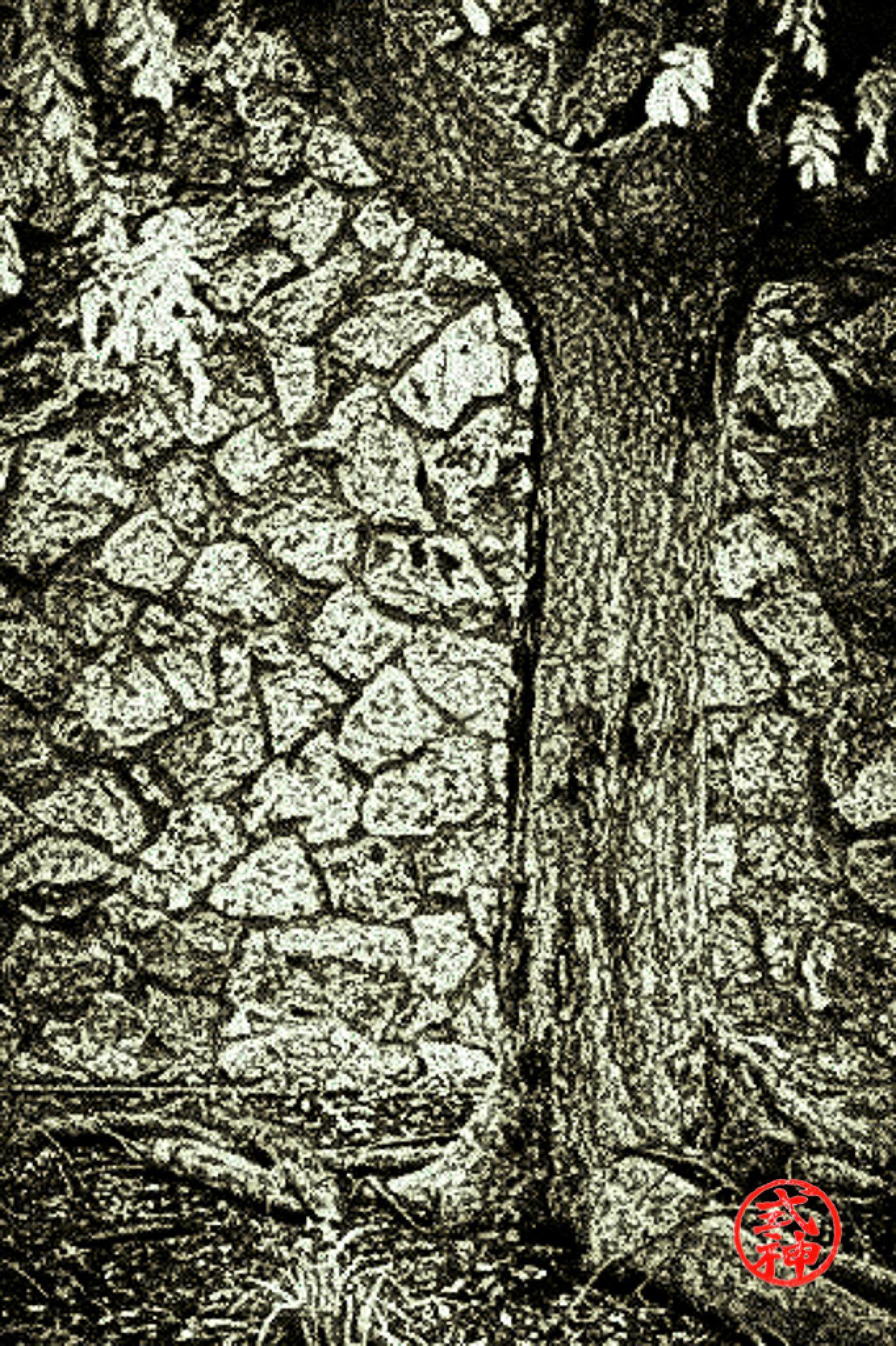 Photo in Random #apartments #tree