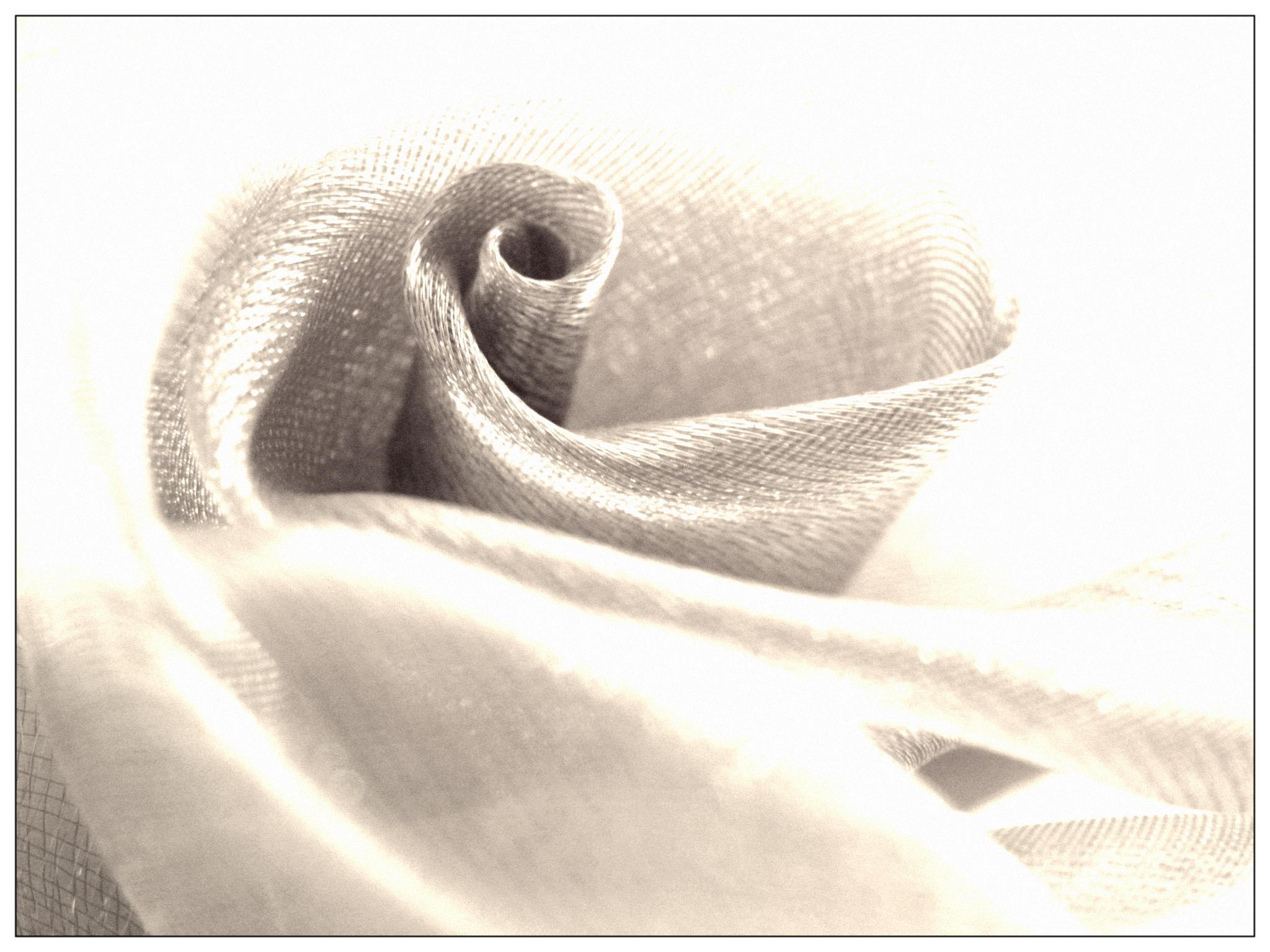 Silk Rosey Swirls by marsider07