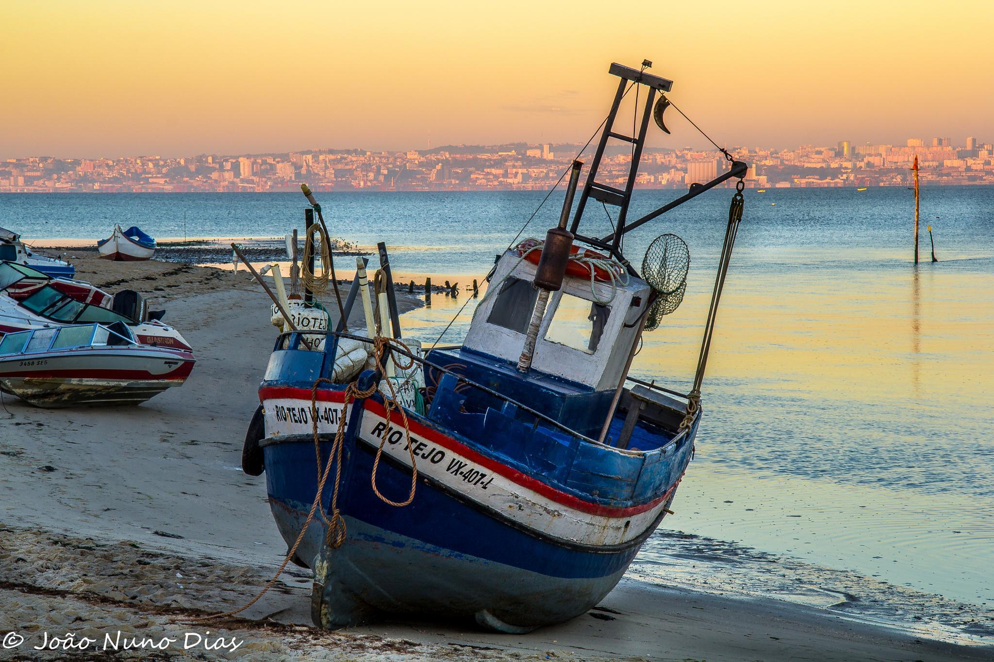 Fish boat by Nuno Dias