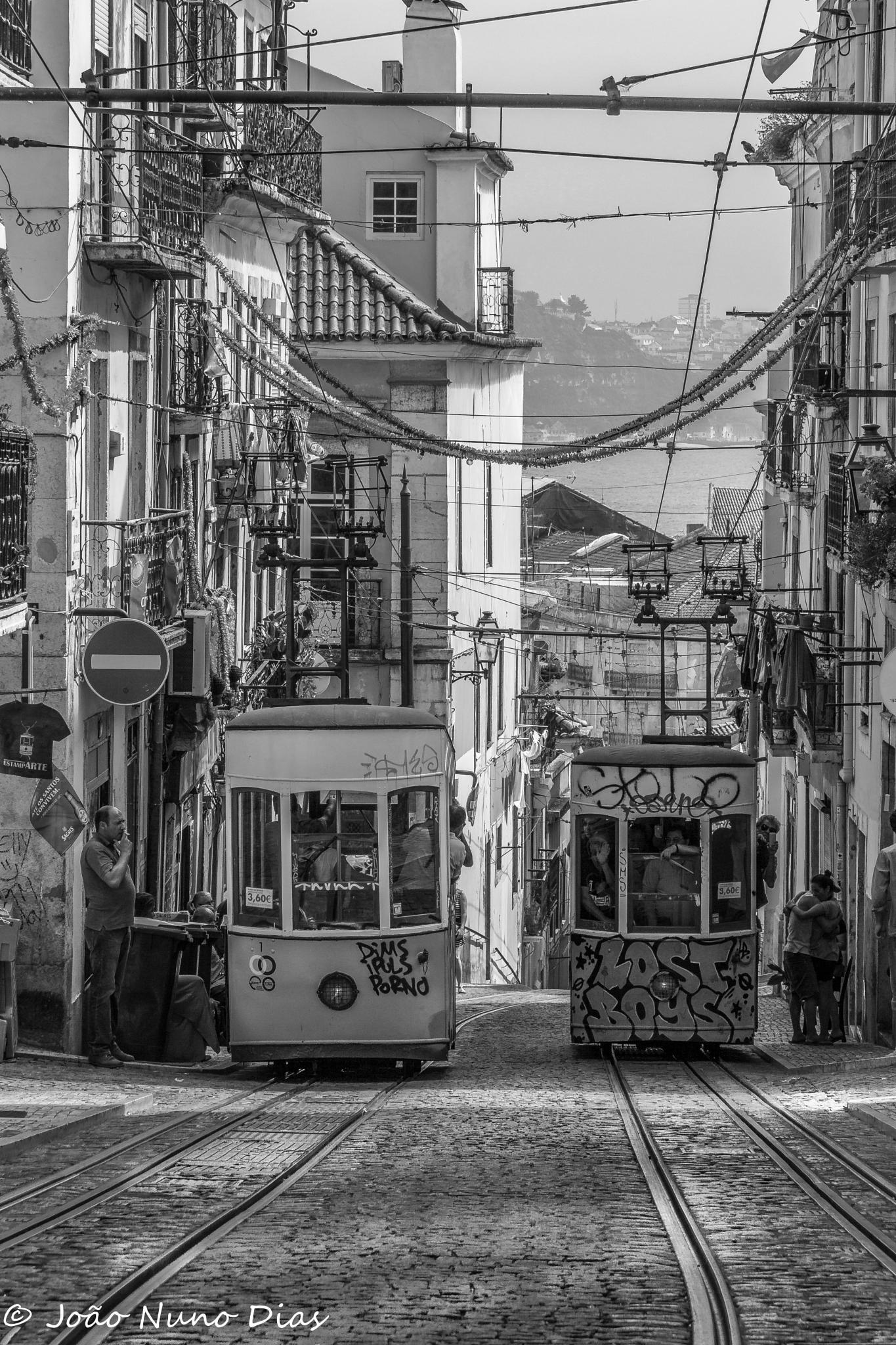 Tram jam... by Nuno Dias