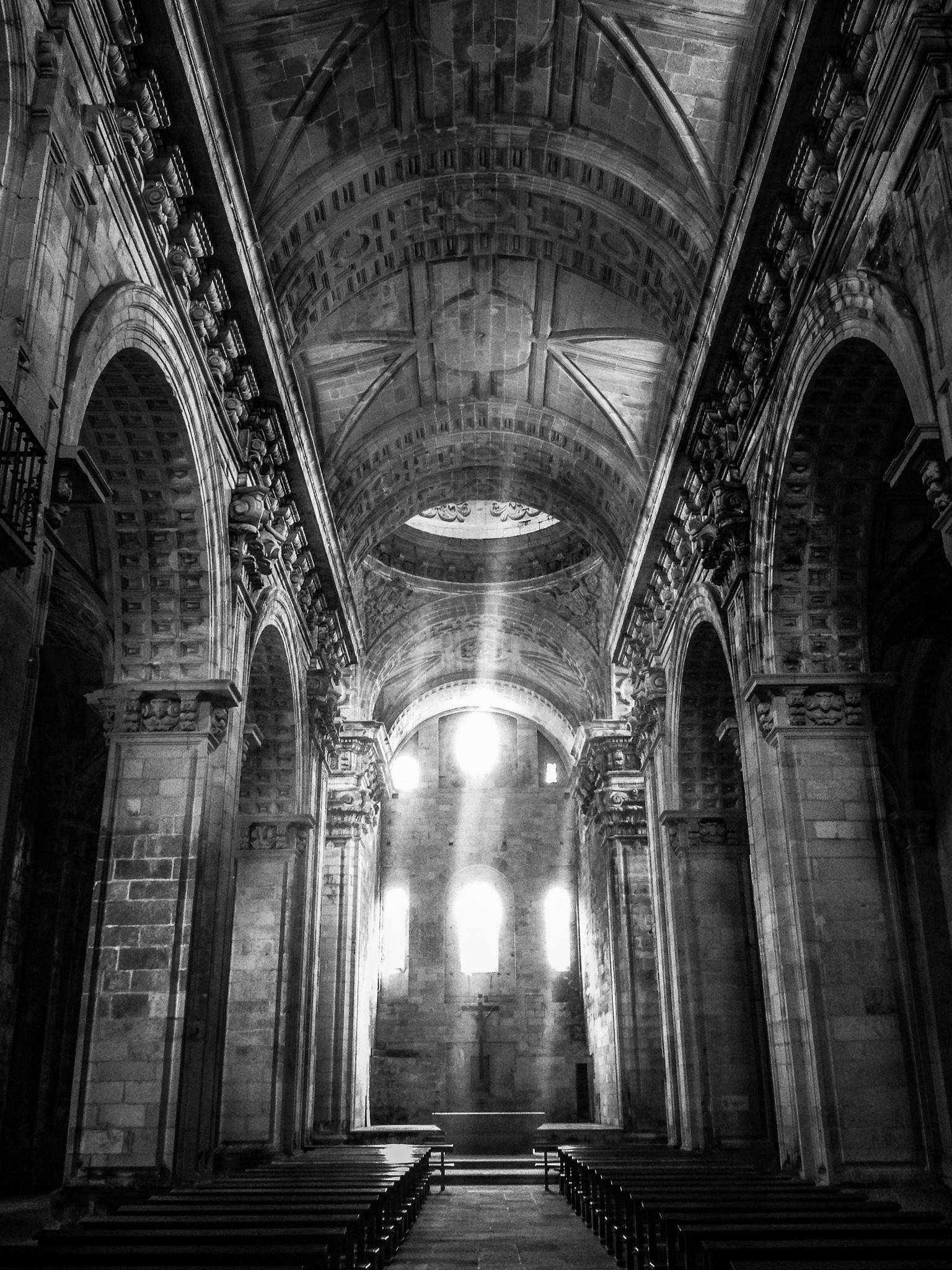 Interior del Monasterio de Santa Maria de Sobrado dos Monxes (Galicia - Spain) by Angel Alicarte Lopez