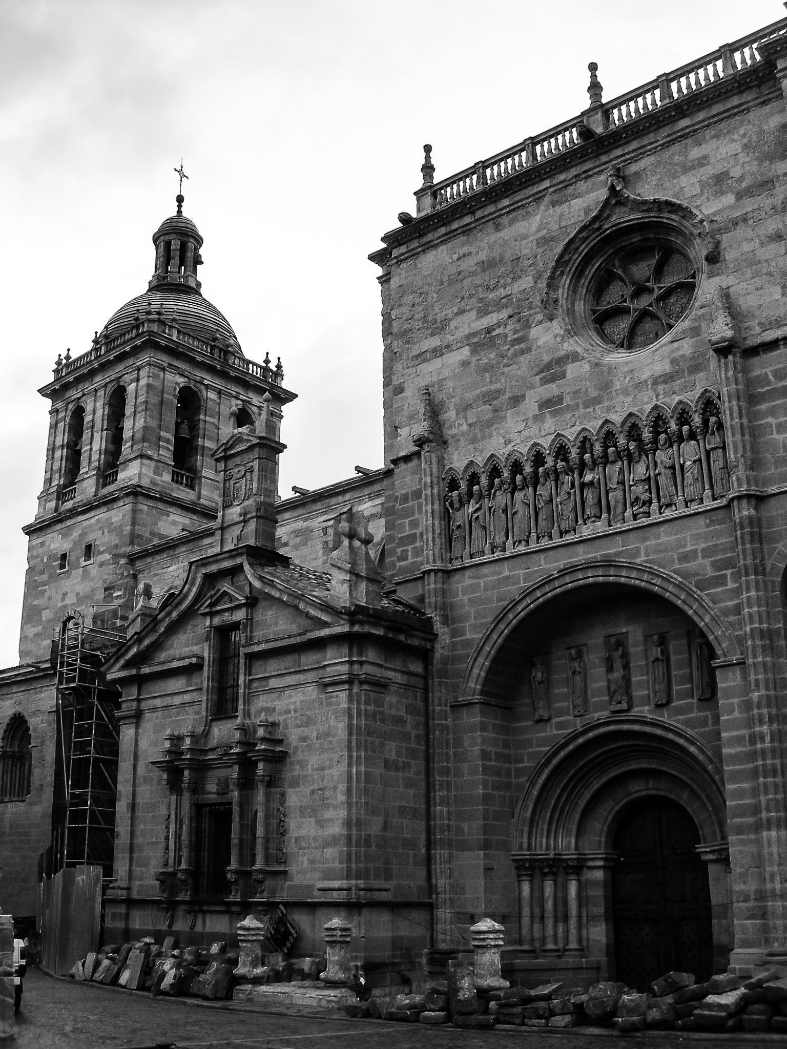 Catedral de Santa Maria (Ciudad Rodrigo - Spain) by Angel Alicarte Lopez