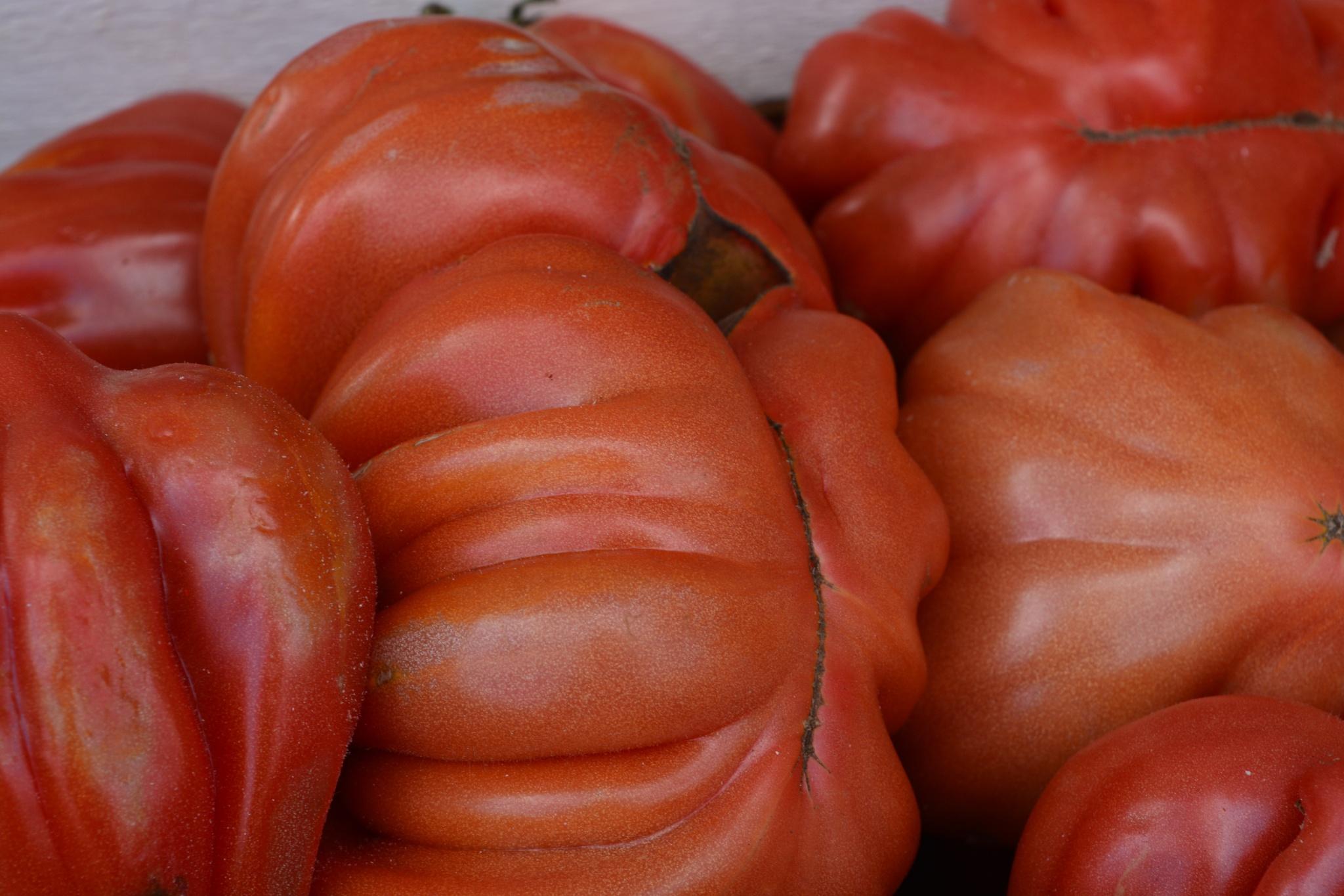 Bio tomatos. by swernthaler