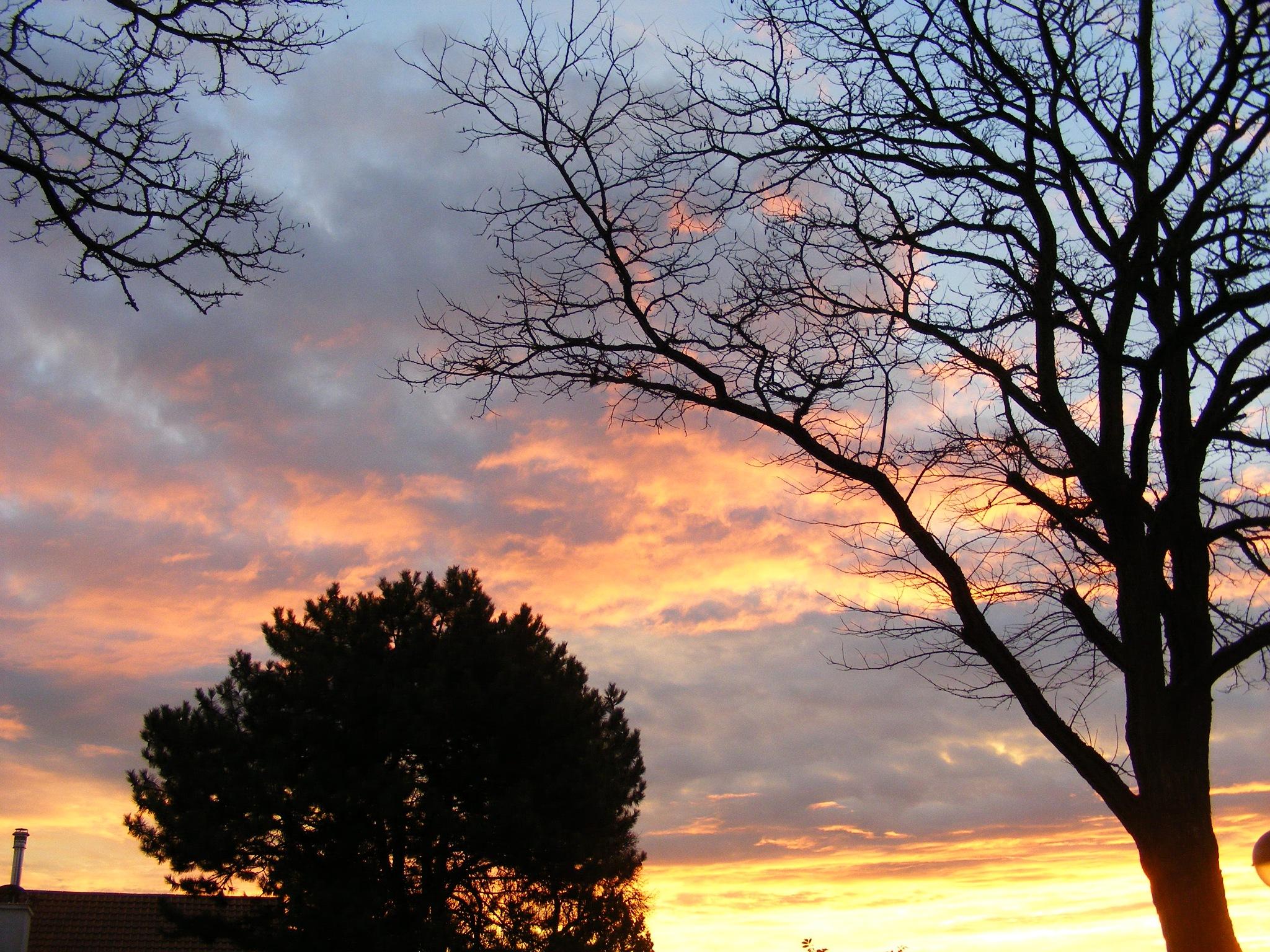 tramonto by swernthaler