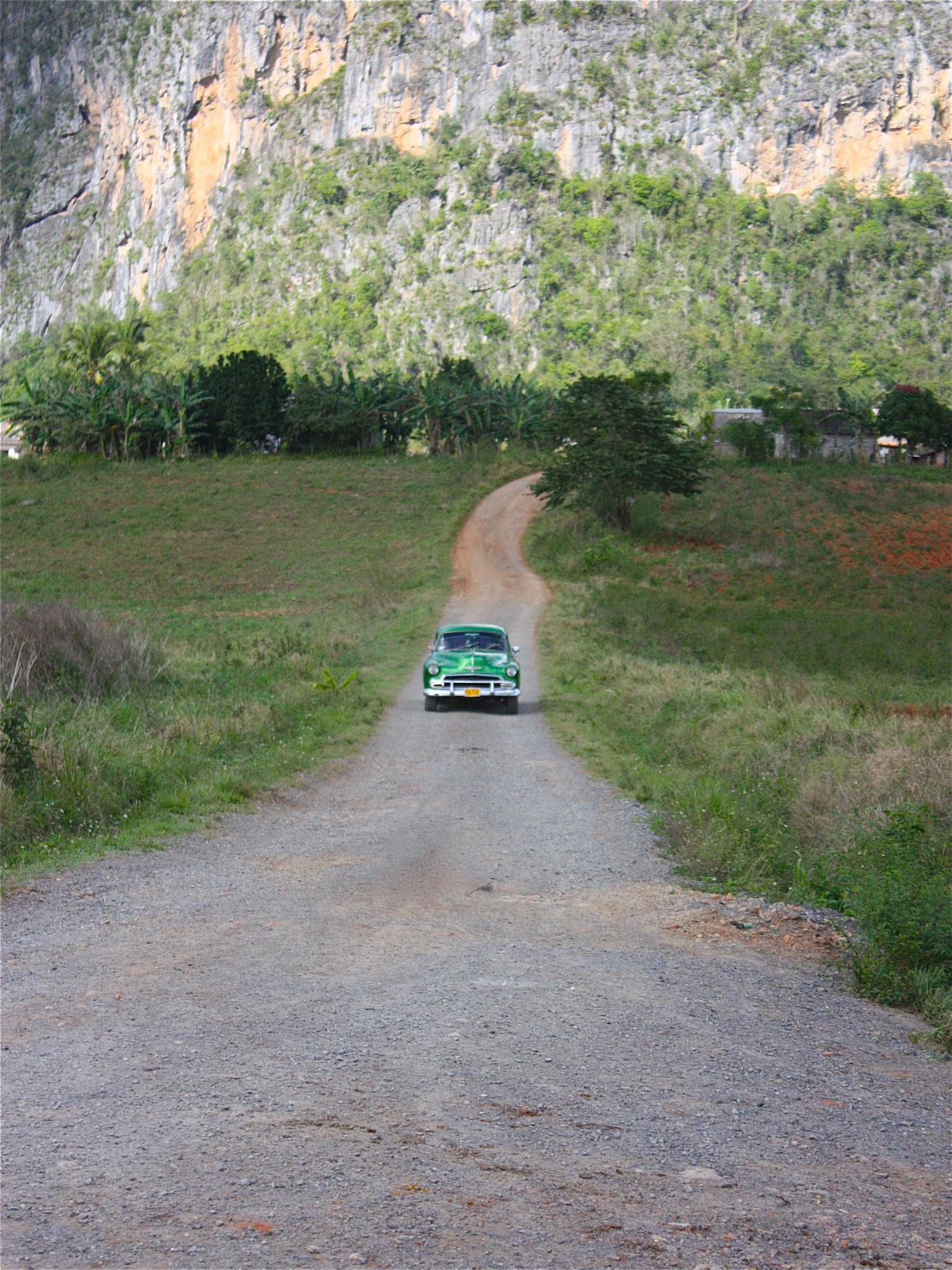 Photo in Rural #vintagecar #vinales #cuba #green