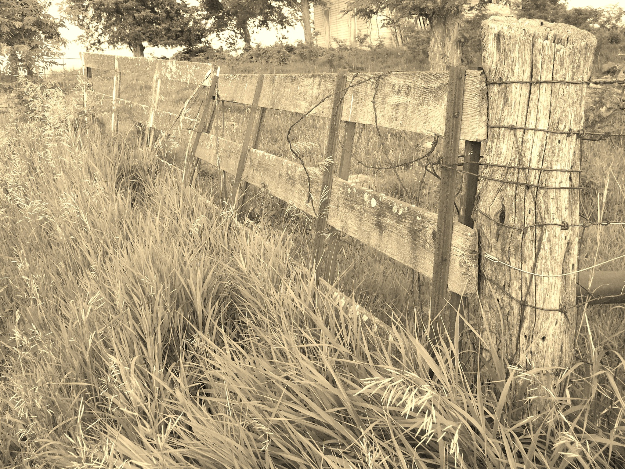 this old fence by don.wormsley