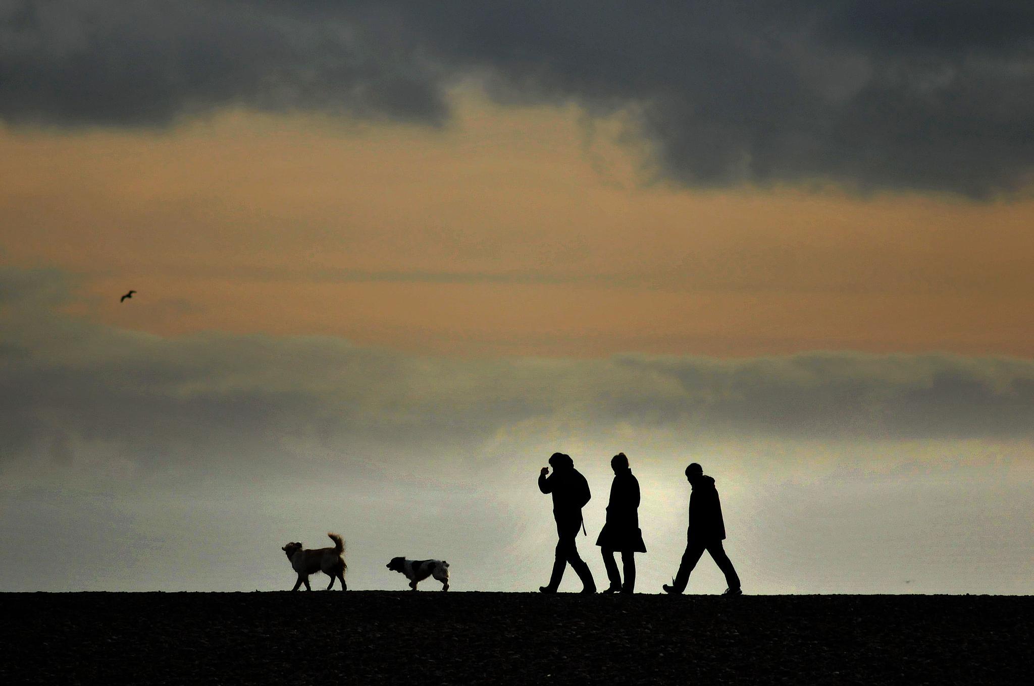 Walk on the beach by Paul.Taylor