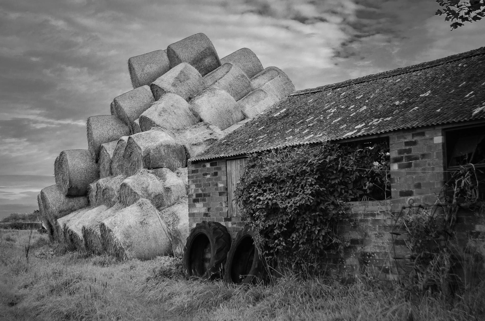 Haystack by gill.kennett.9