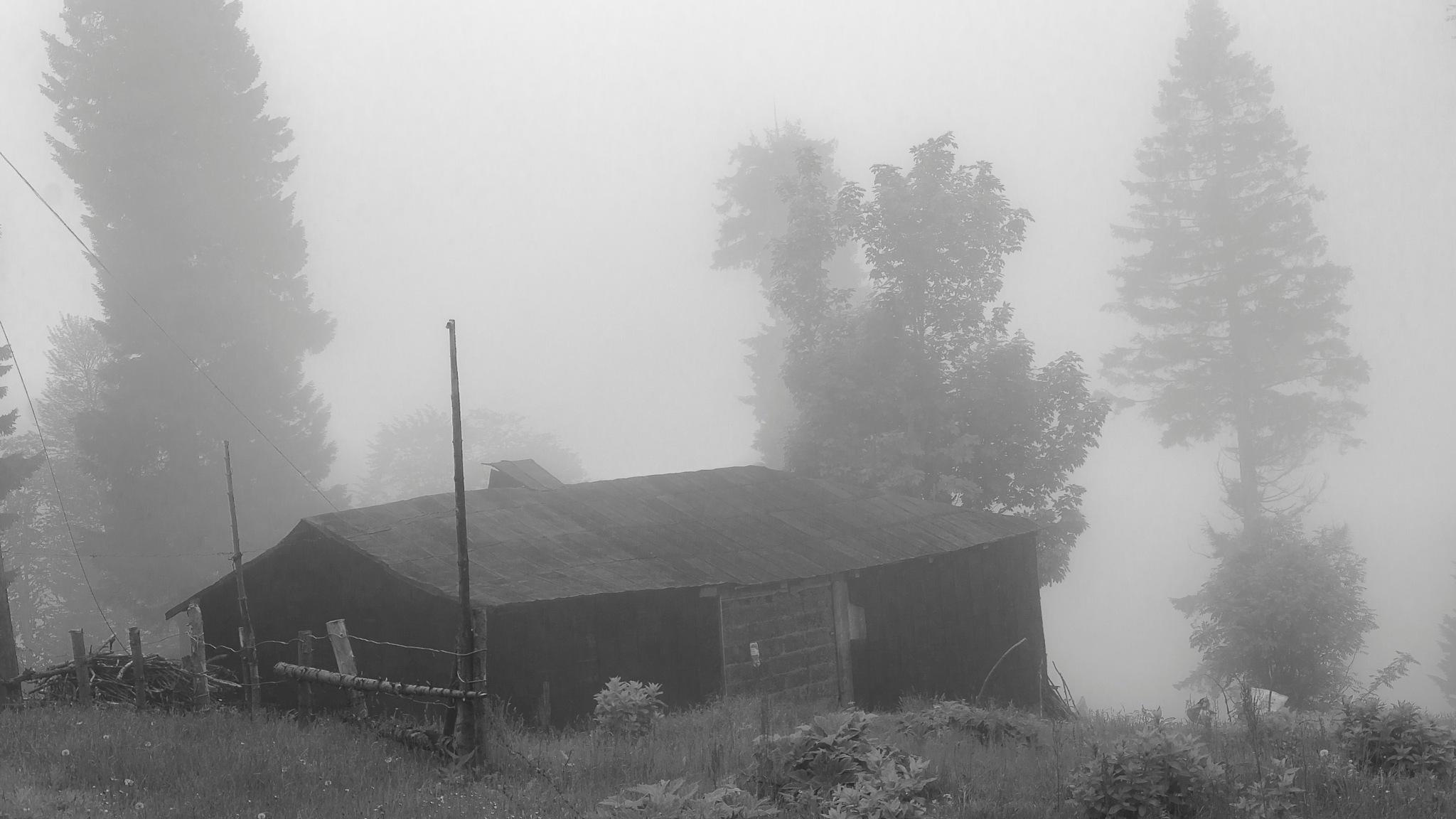 old house by mrtksknky
