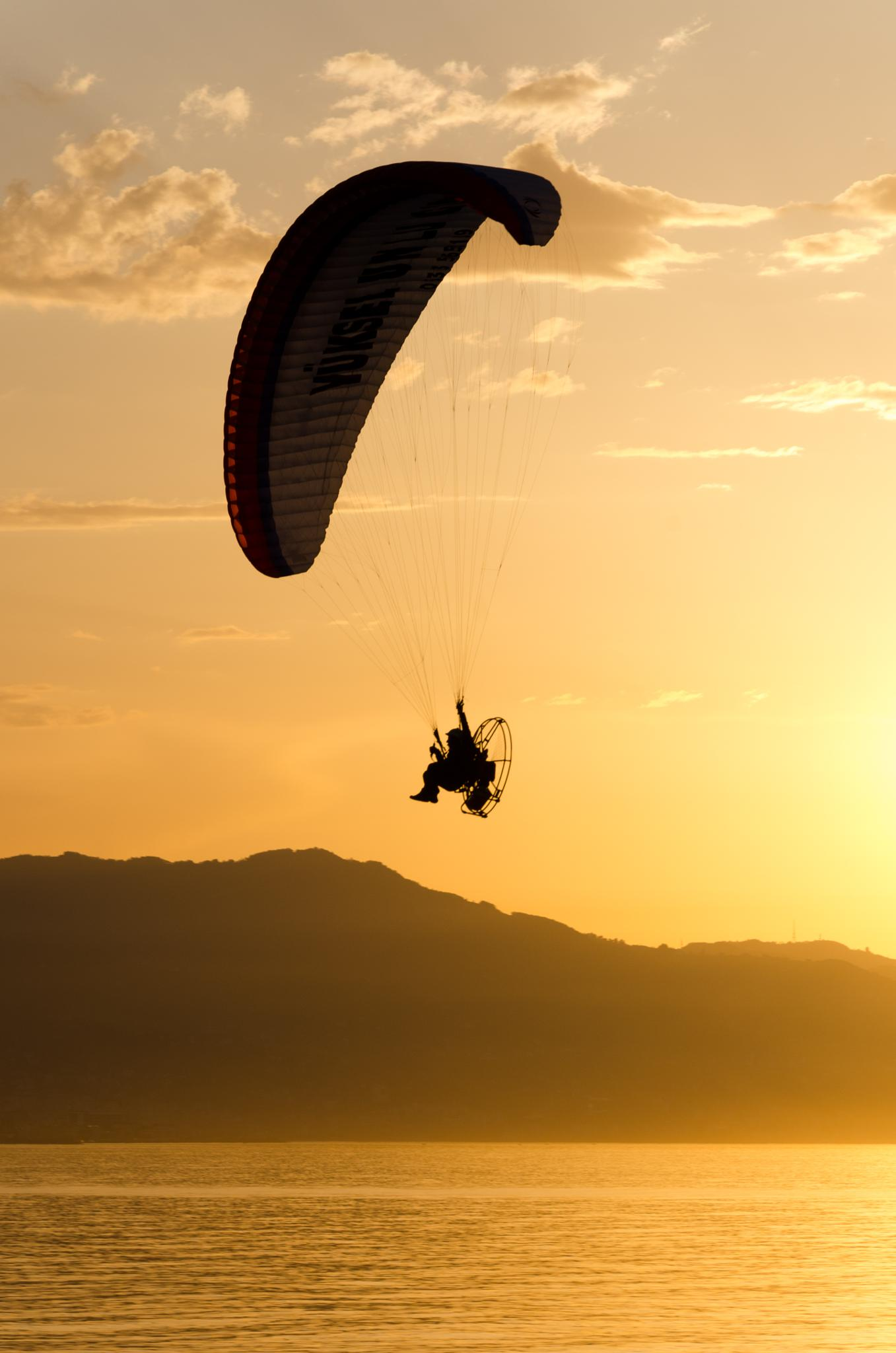 Photo in Sea and Sand #silhouette #sunset #sun #sea #sky #flying