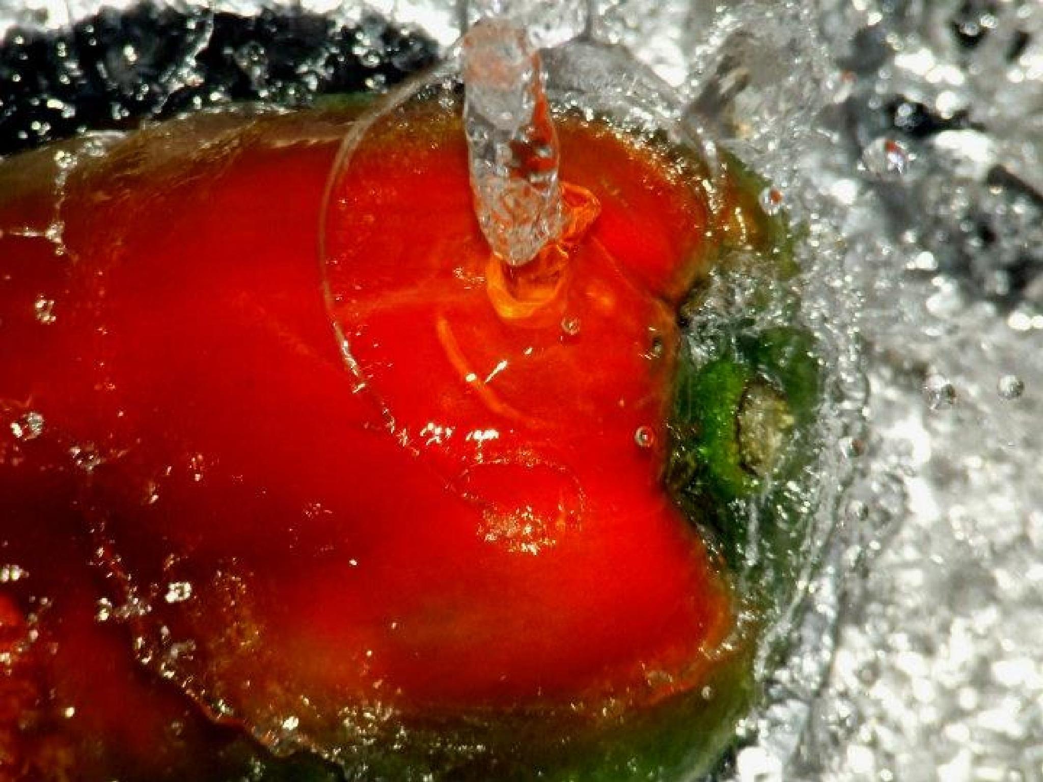 Red pepper by vivianafrazzetto