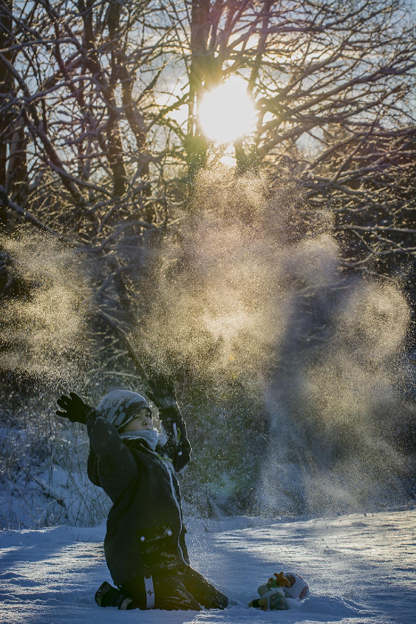 winter day by Helge Skogsrud