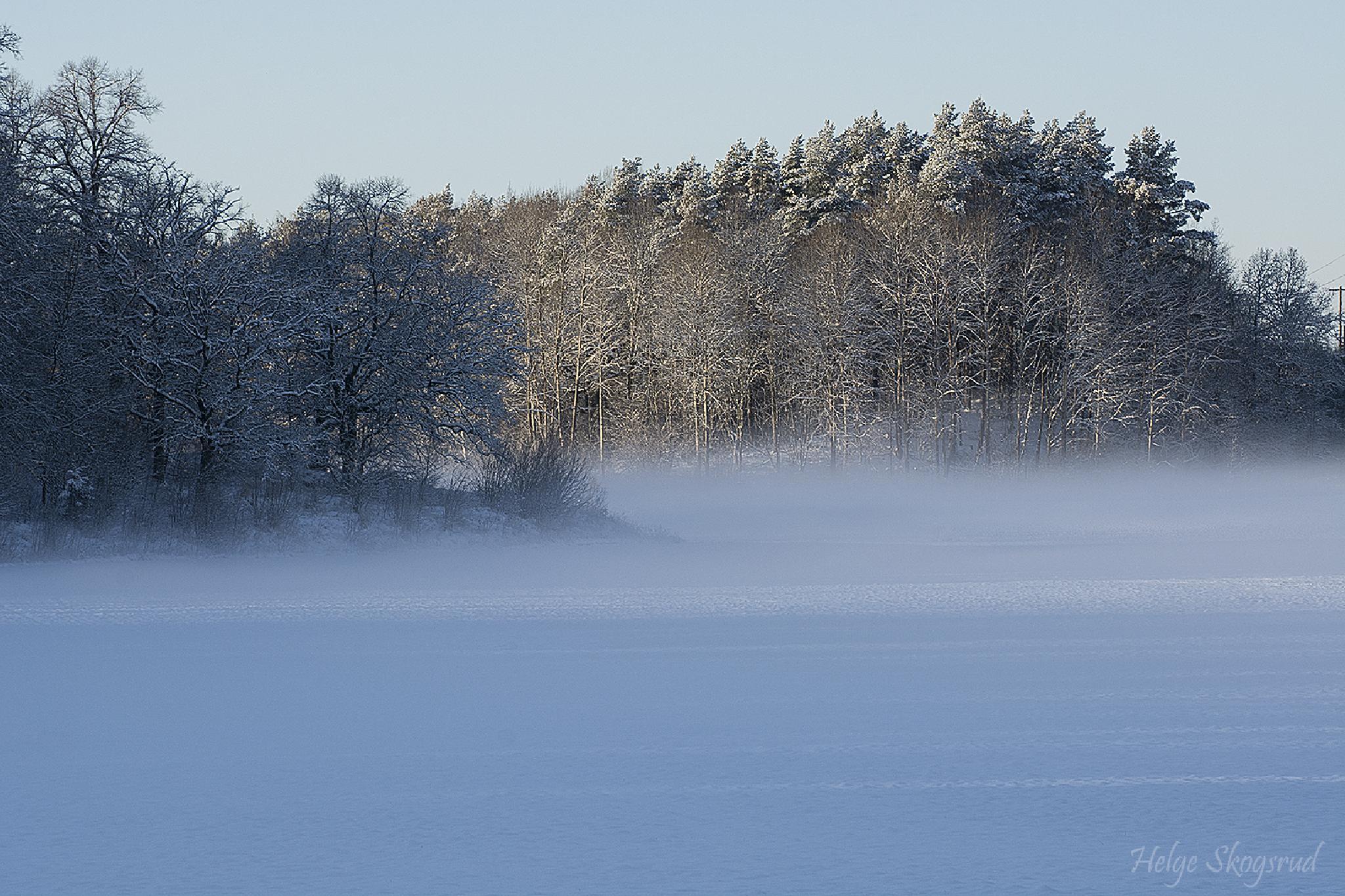 Cold winter day by Helge Skogsrud