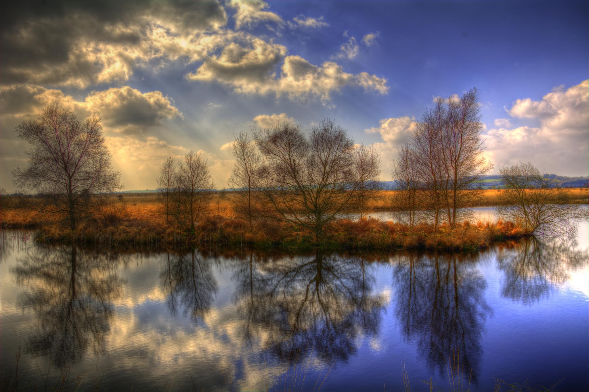 Cors Caron Island Lake by mike.lloyd.125
