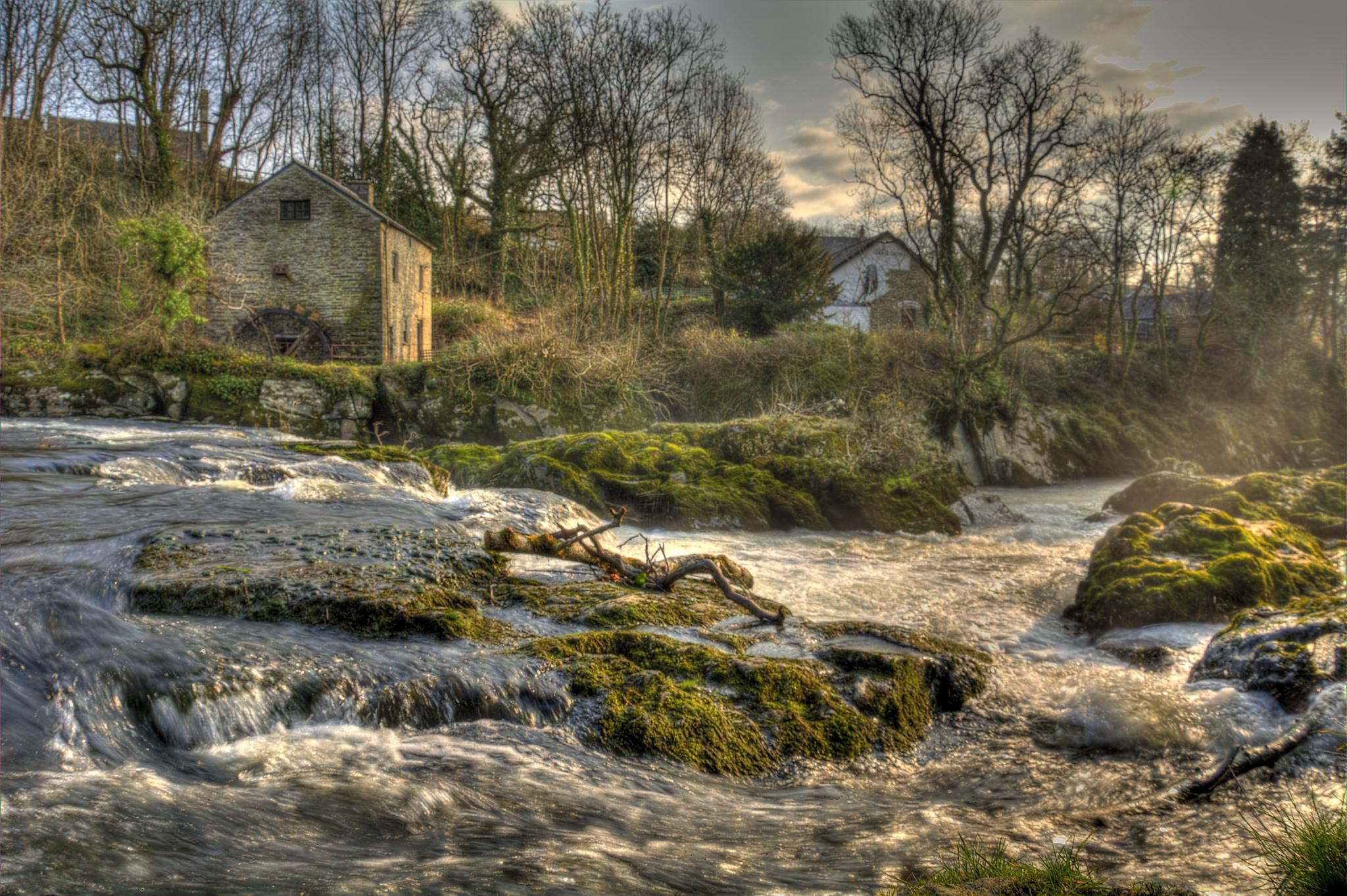 Photo in Nature #cenarth #wales #teifie #river #watermill