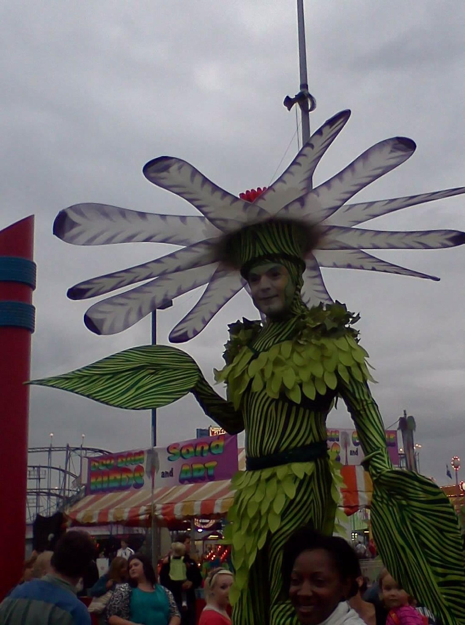Day at the Fair by tessa33