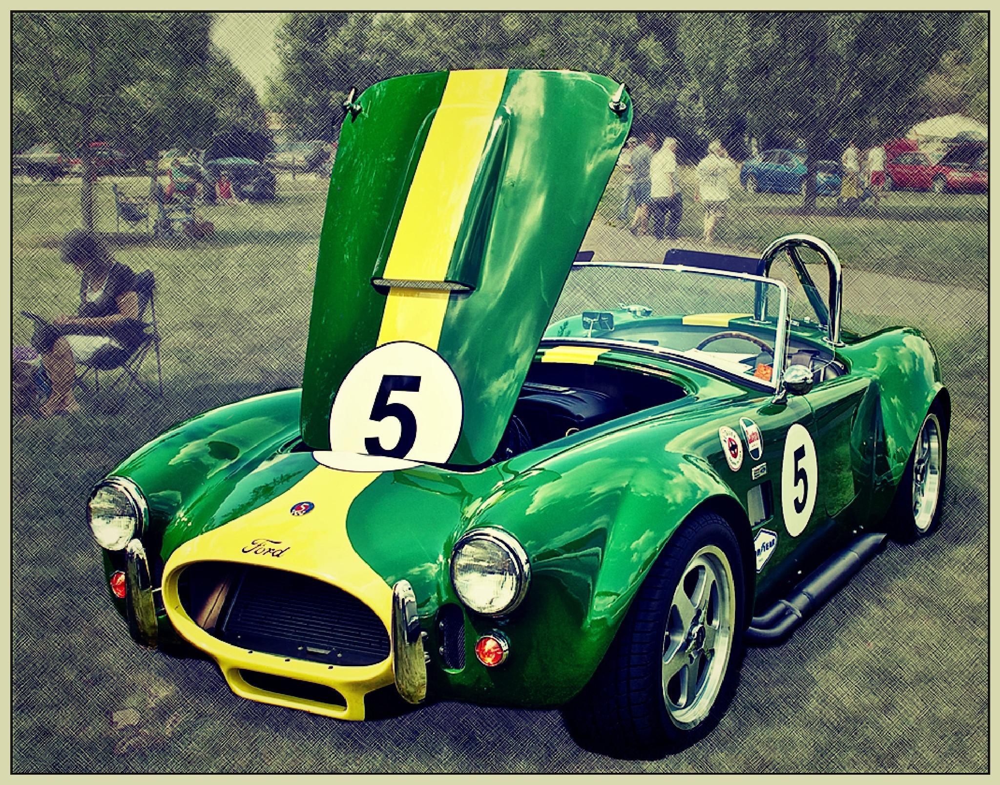 Cobra by Fay R. Dildine, Jr.