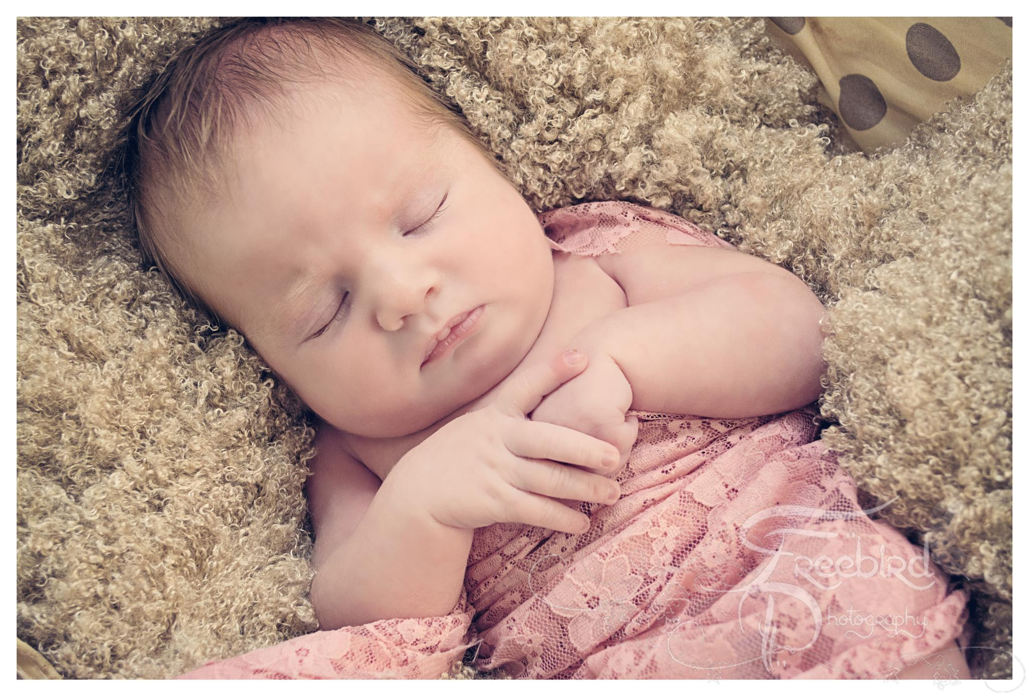 Sleeping Princess by FreebirdphotographyUK