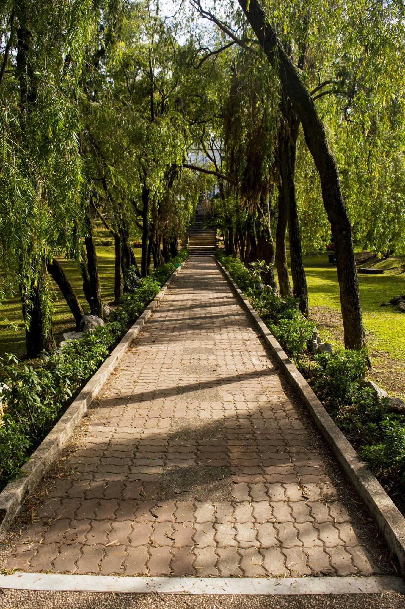 Park path by BearMan